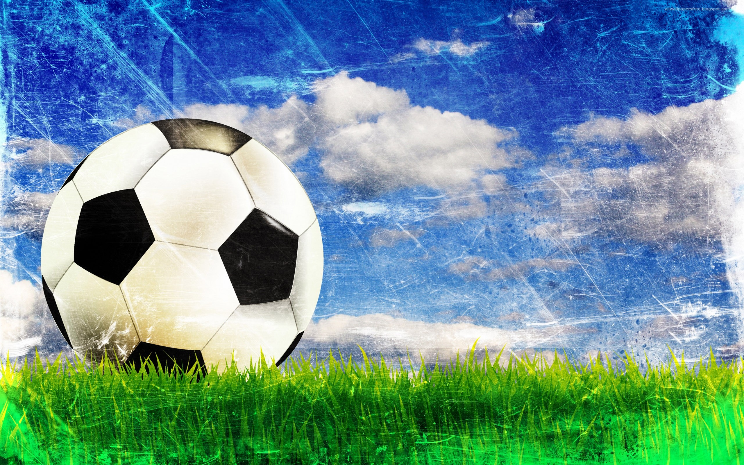 2560x1600 Ball on the grass wallpapers | Ball on the grass stock photos