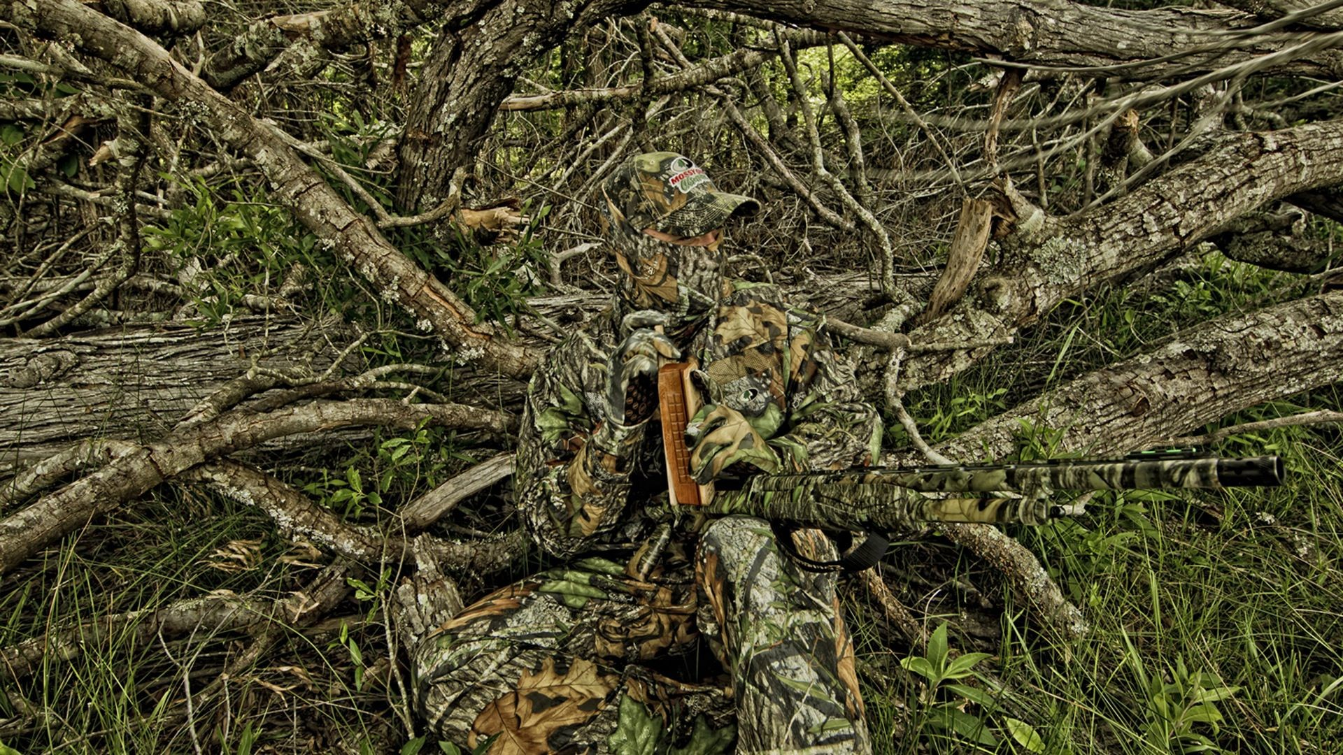 Green Paint For Deer Stands