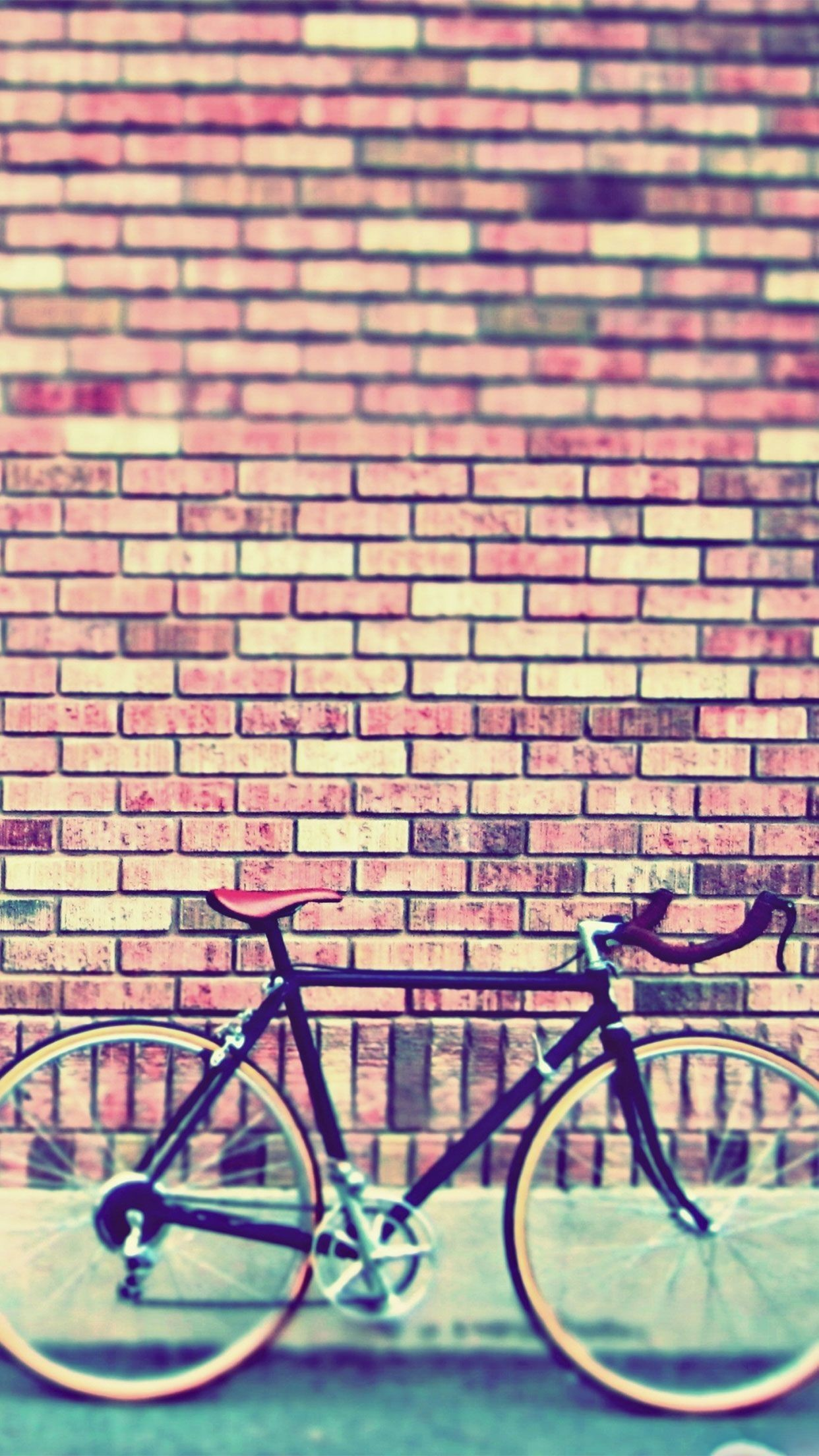 Fixie Wallpaper 2018 37 Images