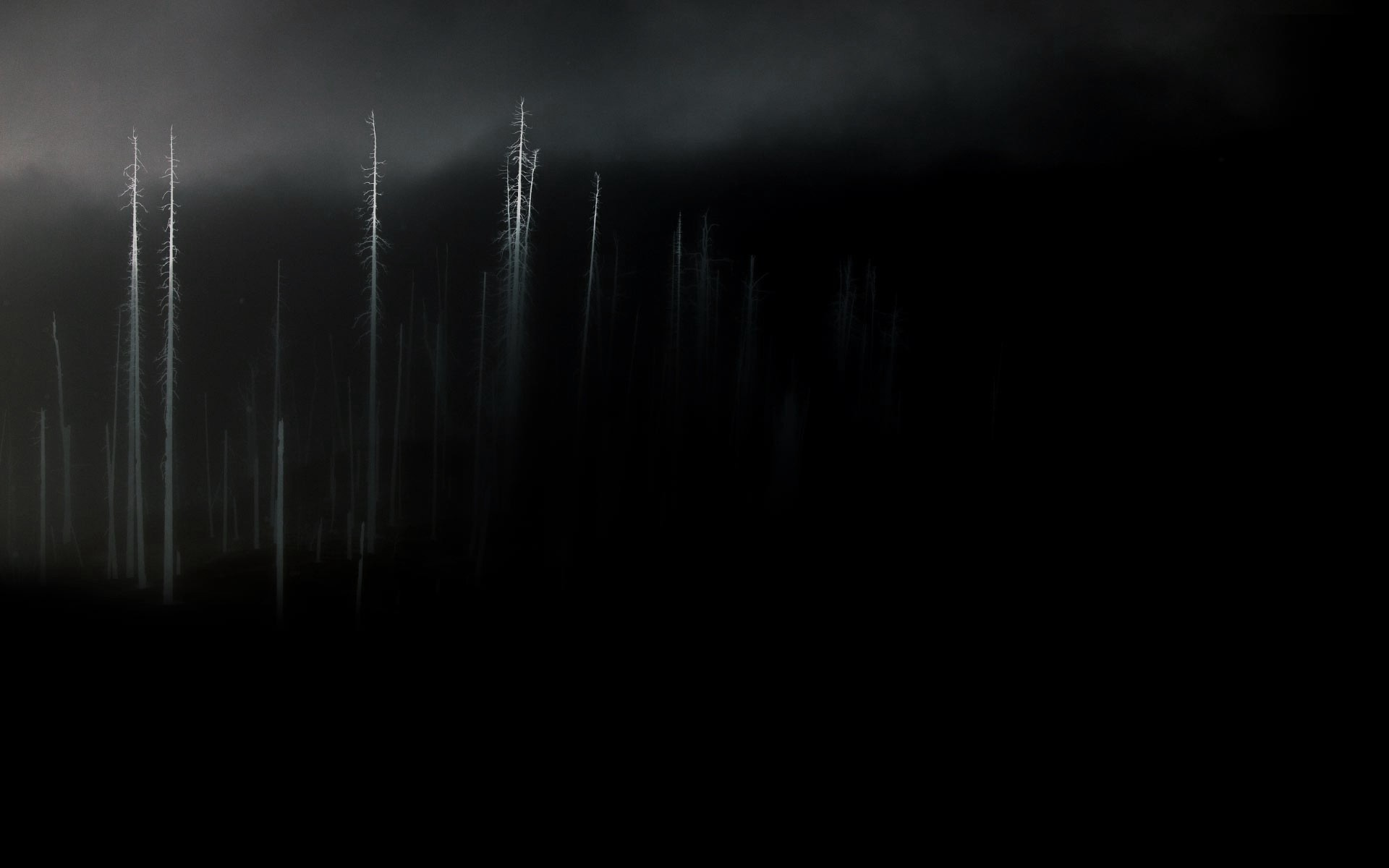 1920x1200 ... in the darkness HD Wallpaper