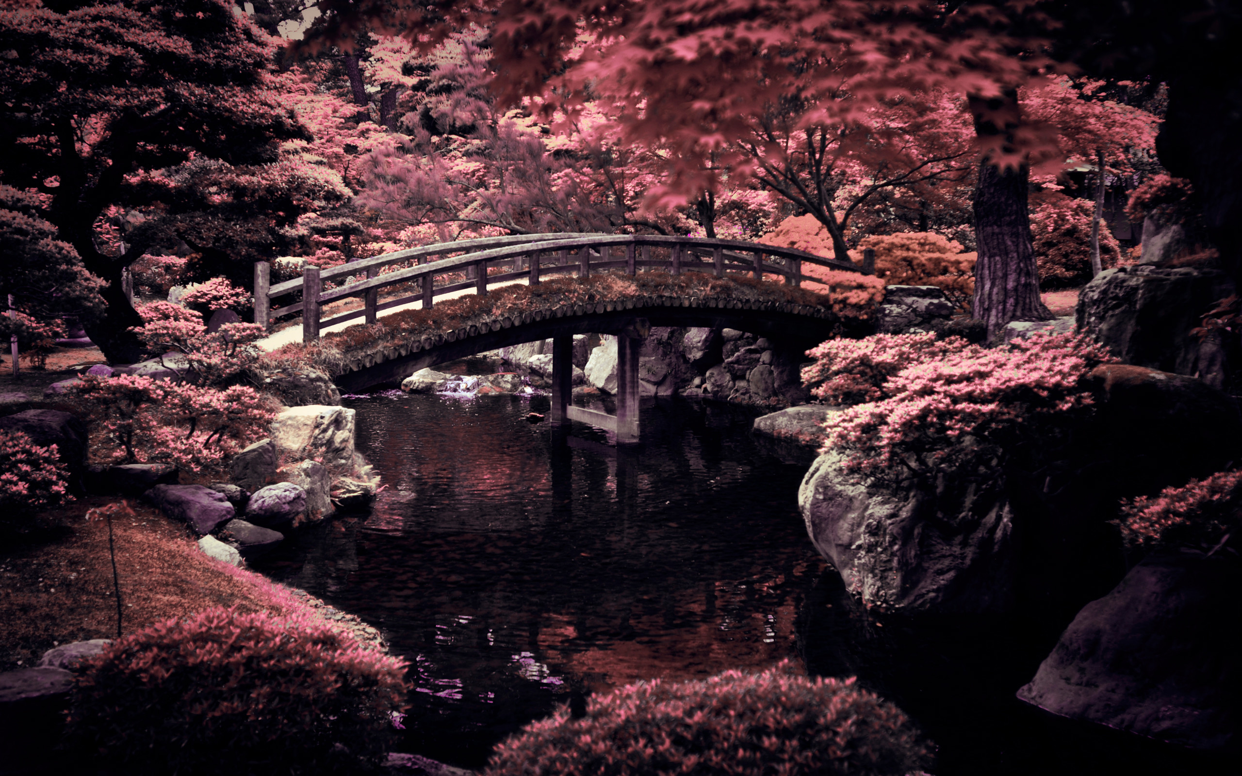 2560x1600 Imperial Garden Japan Wallpaper Desktop