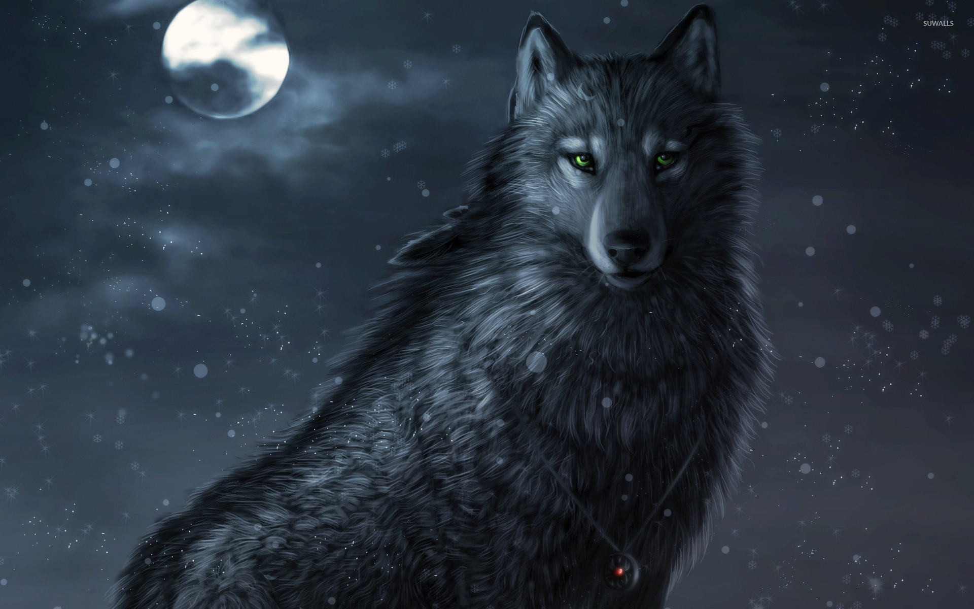 1920x1200 Dark wolf wallpaper