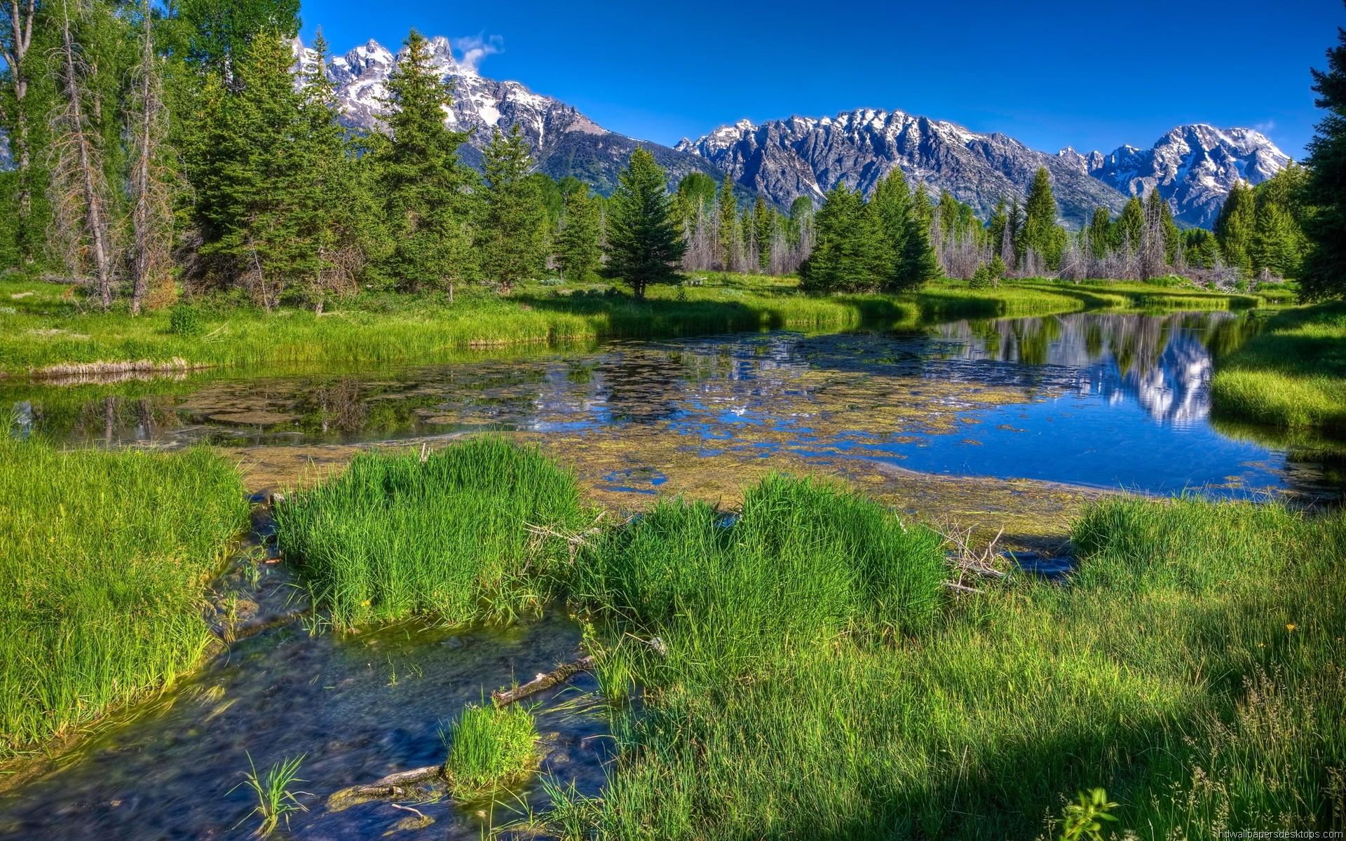 2560x1600 hd nature gorgeous wallpapers desktop
