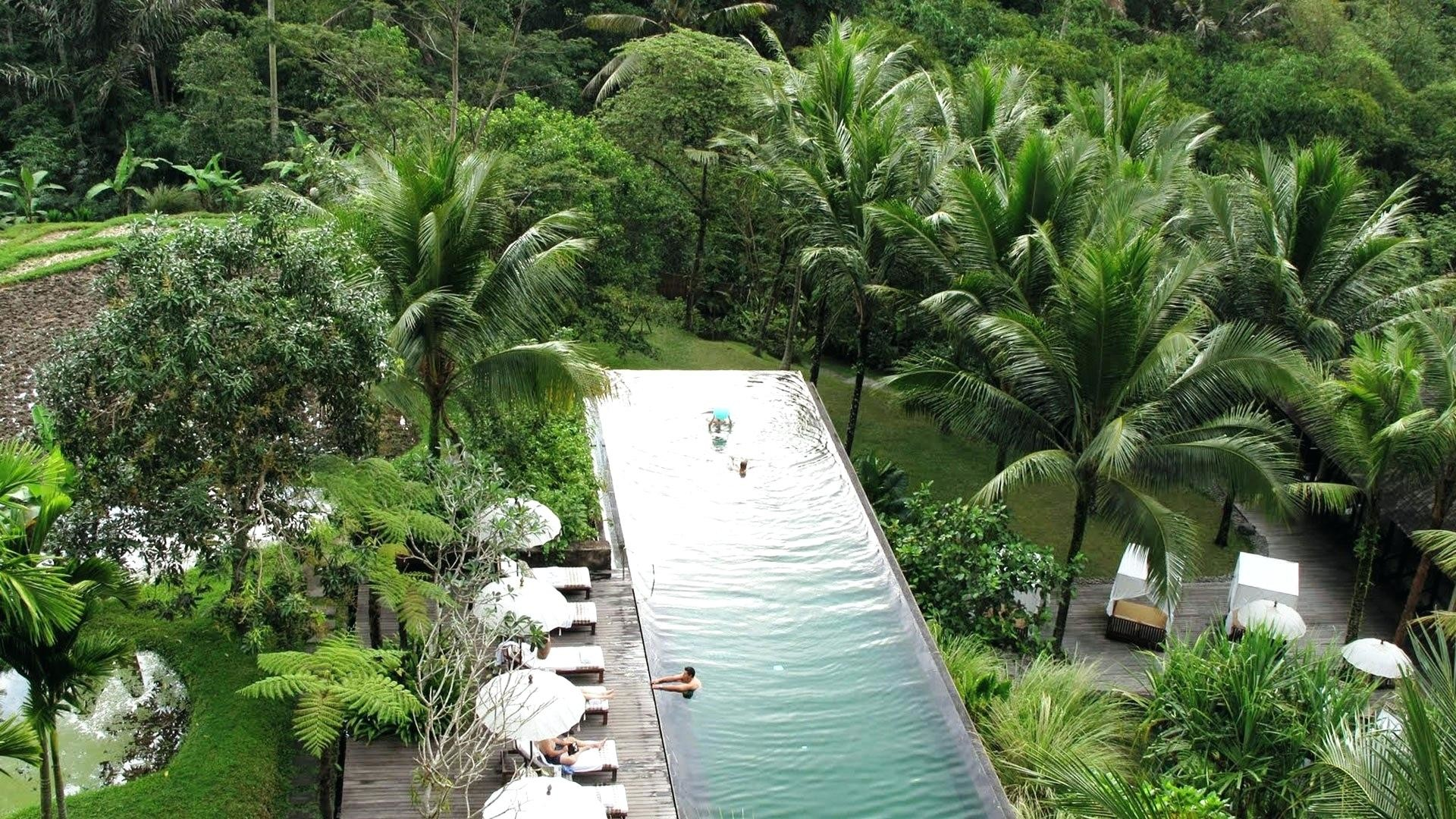 Ubud hanging gardens bali photos Cached