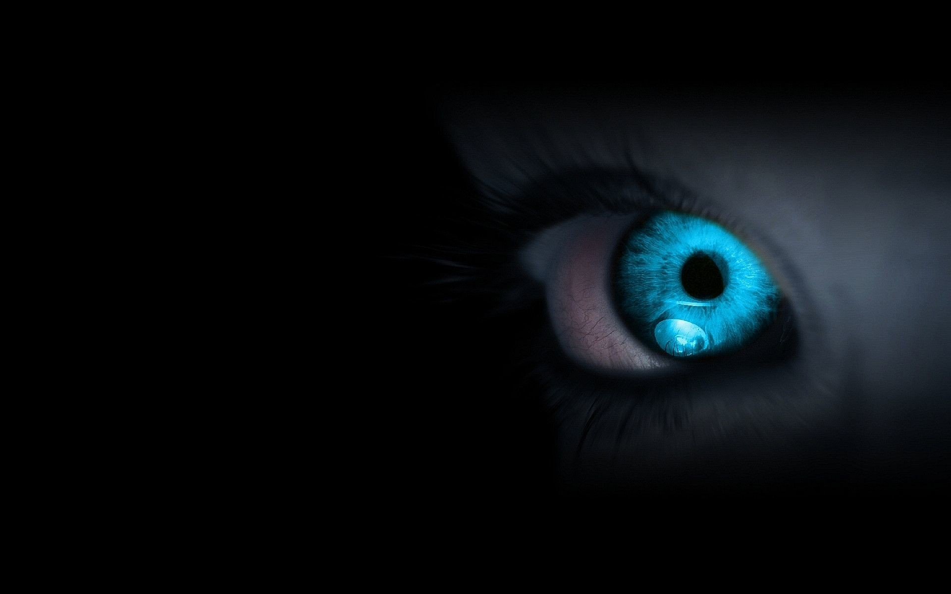 1077551 blue eyes wallpaper 1920x1200 for retina