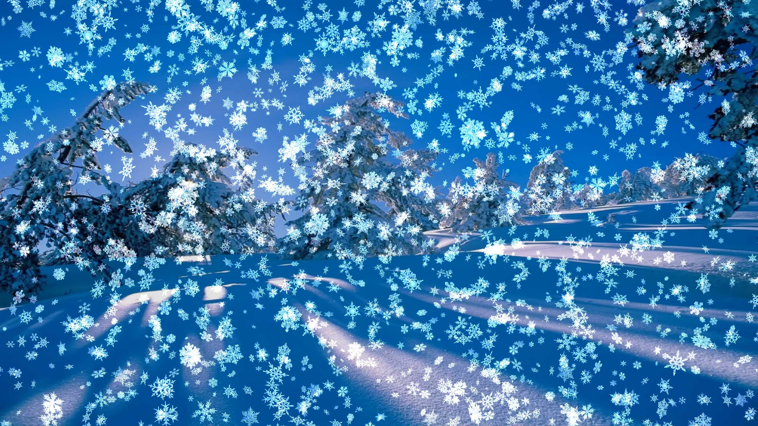 2560x1440 Snowy Desktop 3D