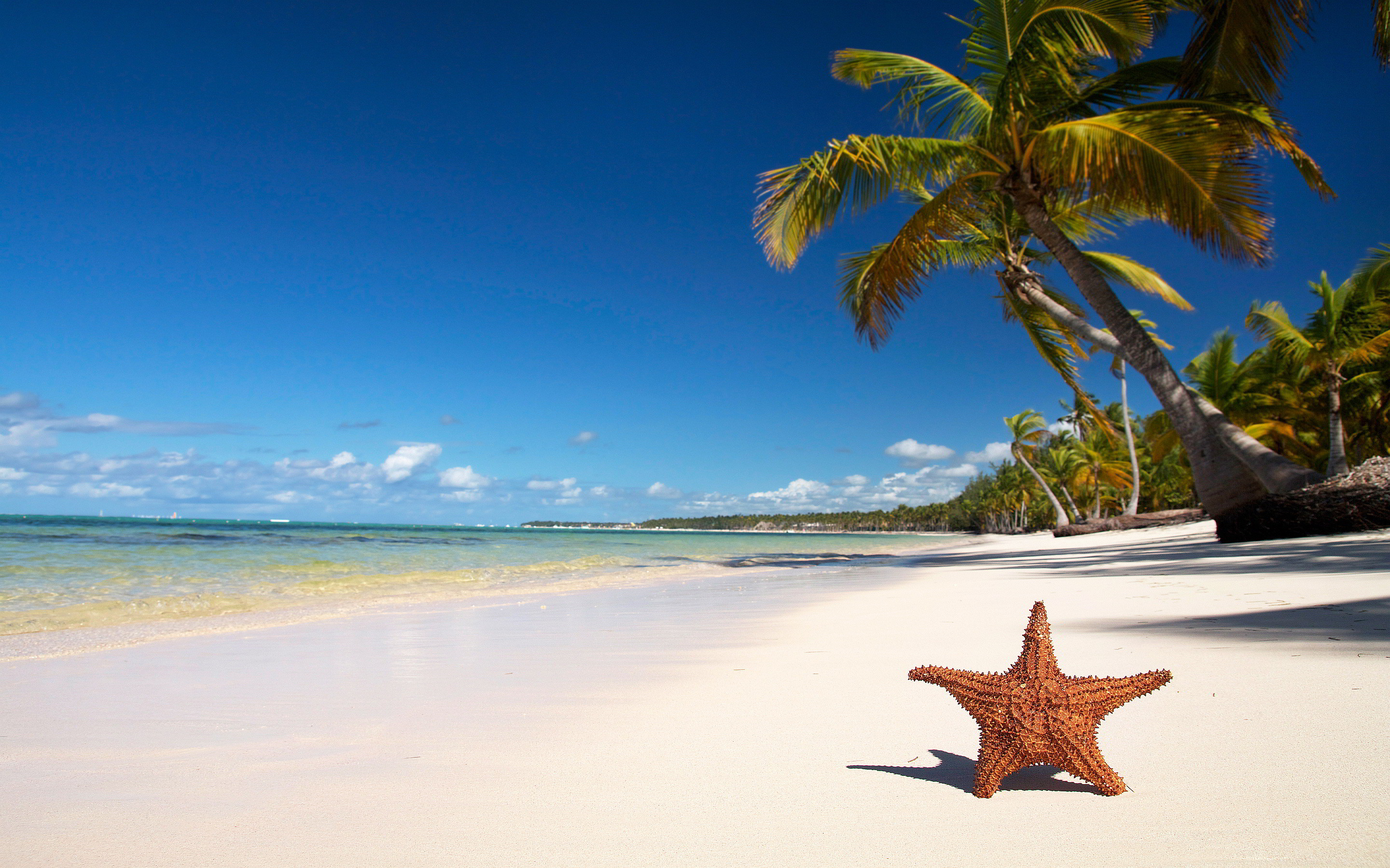 Hd Beach Backgrounds 74 Images