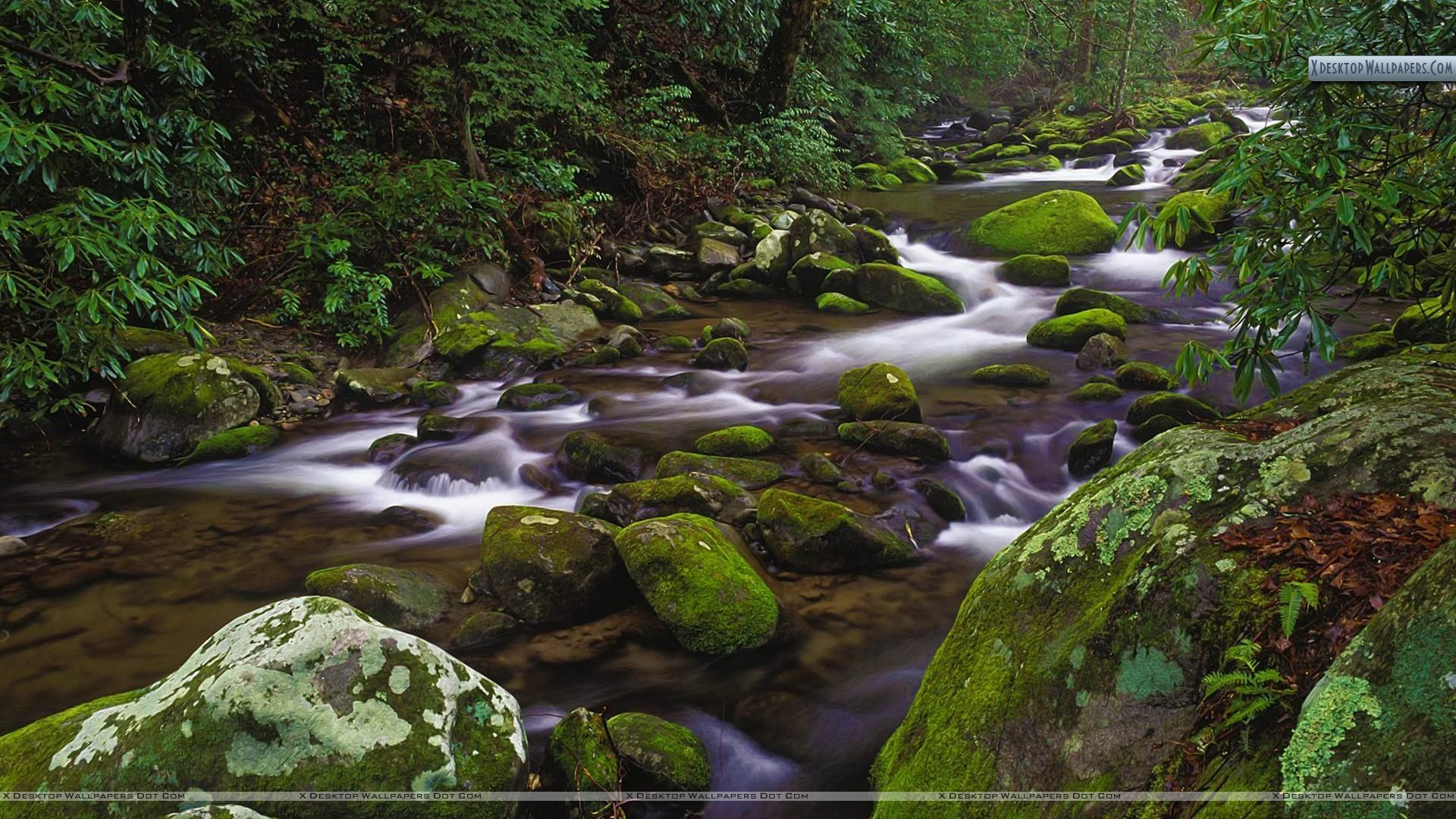 "1920x1080 You are viewing wallpaper titled ""Mountain Stream, Great Smoky ..."