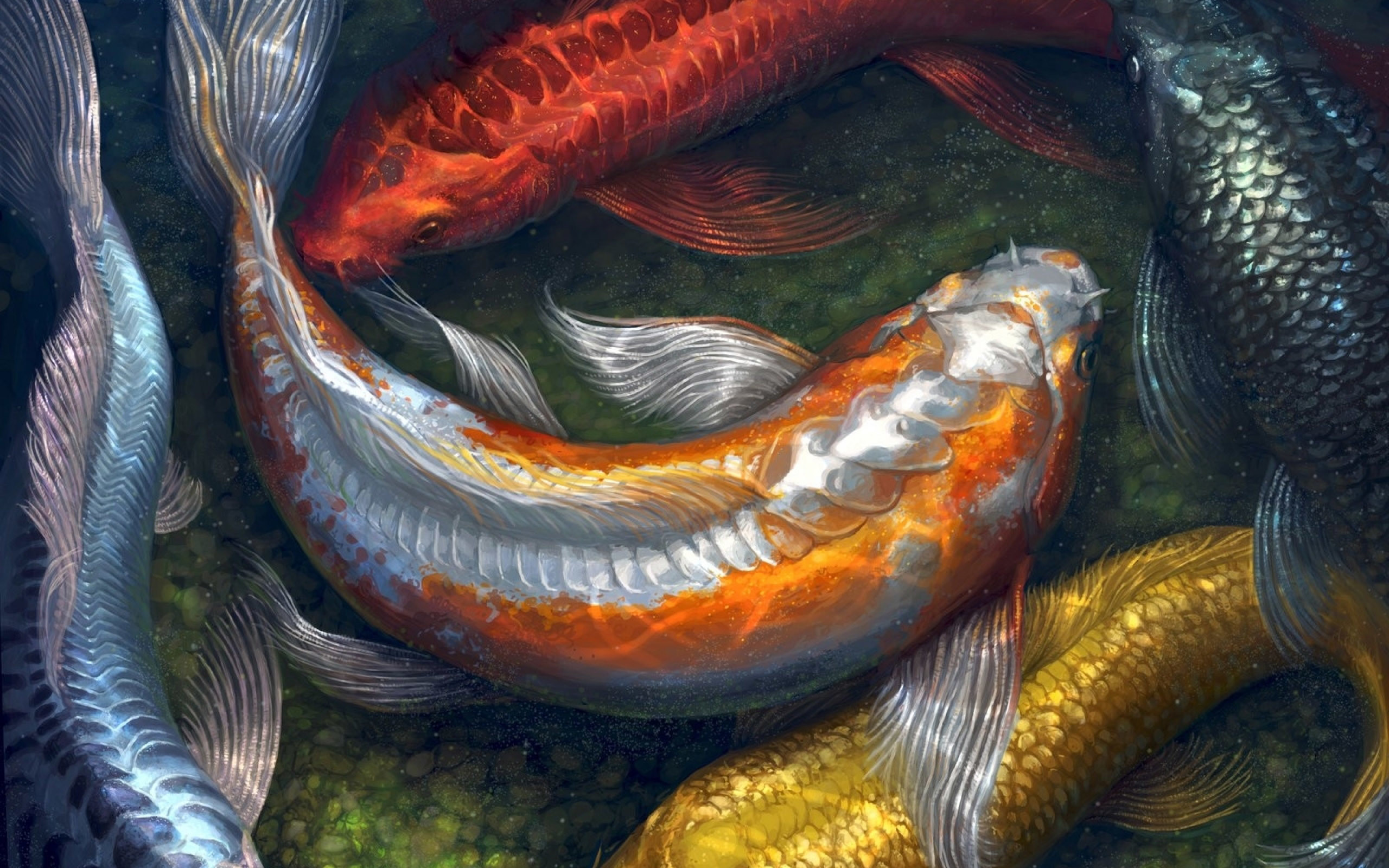 ... Koi Fish Live Wallpaper Free Download For Windows 7 Wallpaper