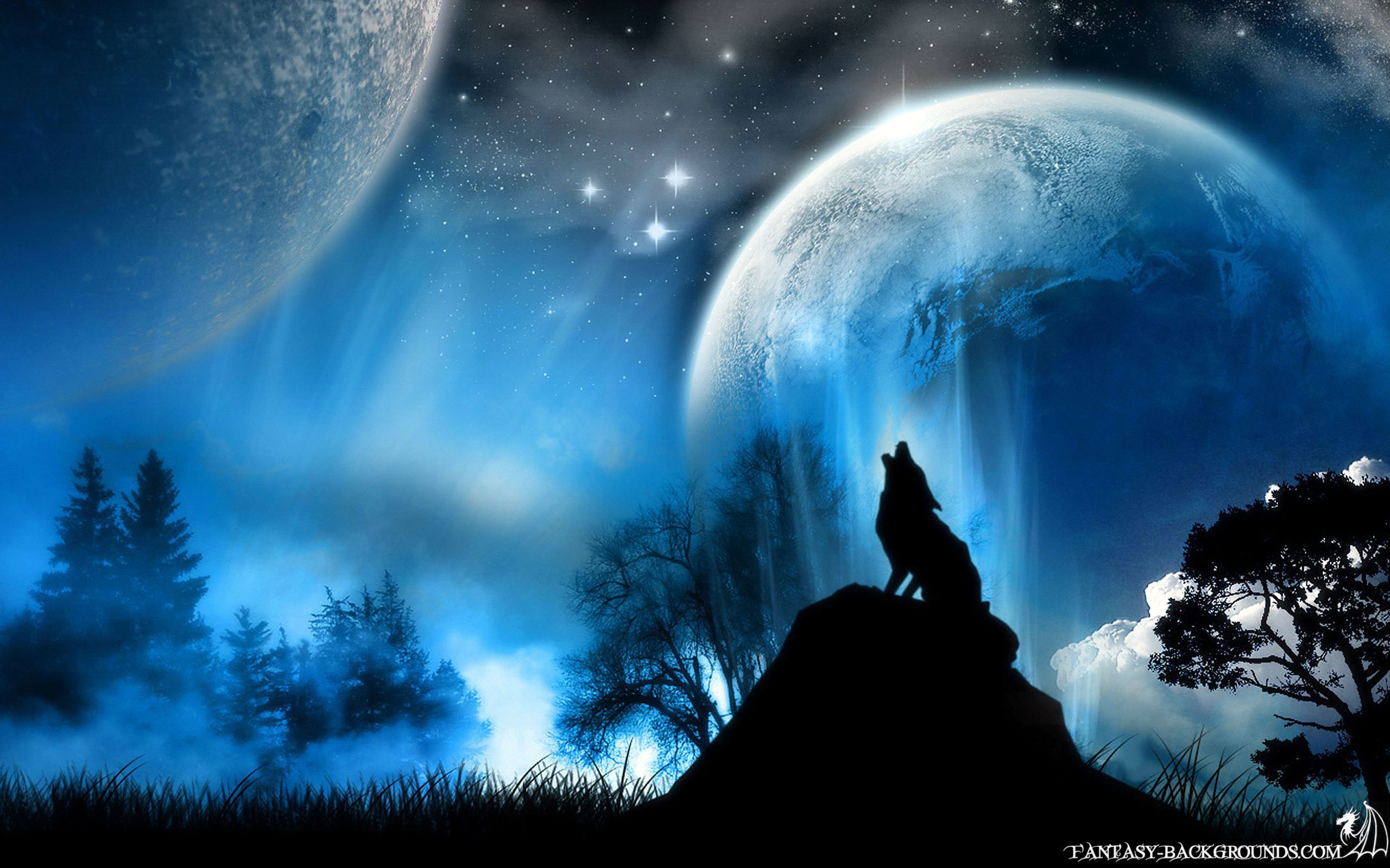 2560x1600 boytoy_84 images Beautiful Wolf HD wallpaper and background photos