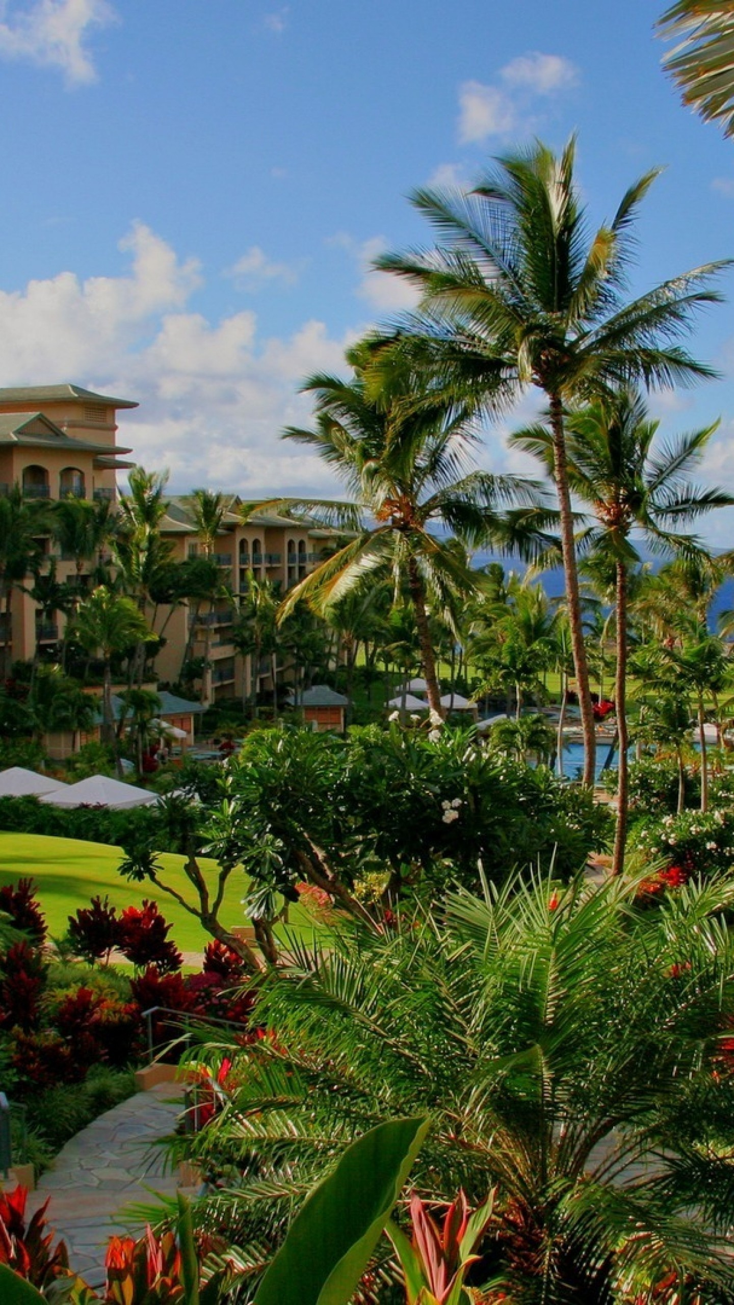 1440x2560 Preview wallpaper hawaii, hotel, palm trees, swimming pool, sea, flowers