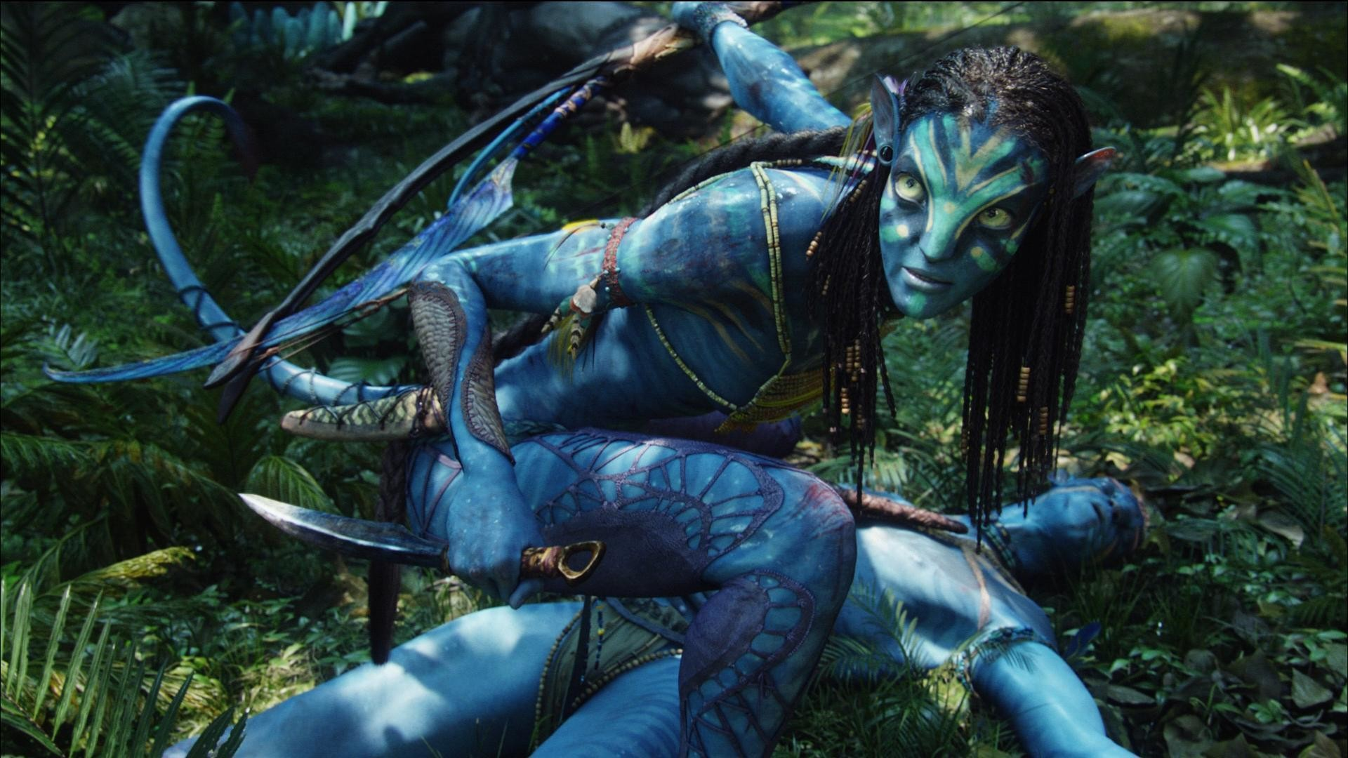 1920x1080 Original Avatar HD Wallpapers for All Avatar Wallpaper Fans Movie