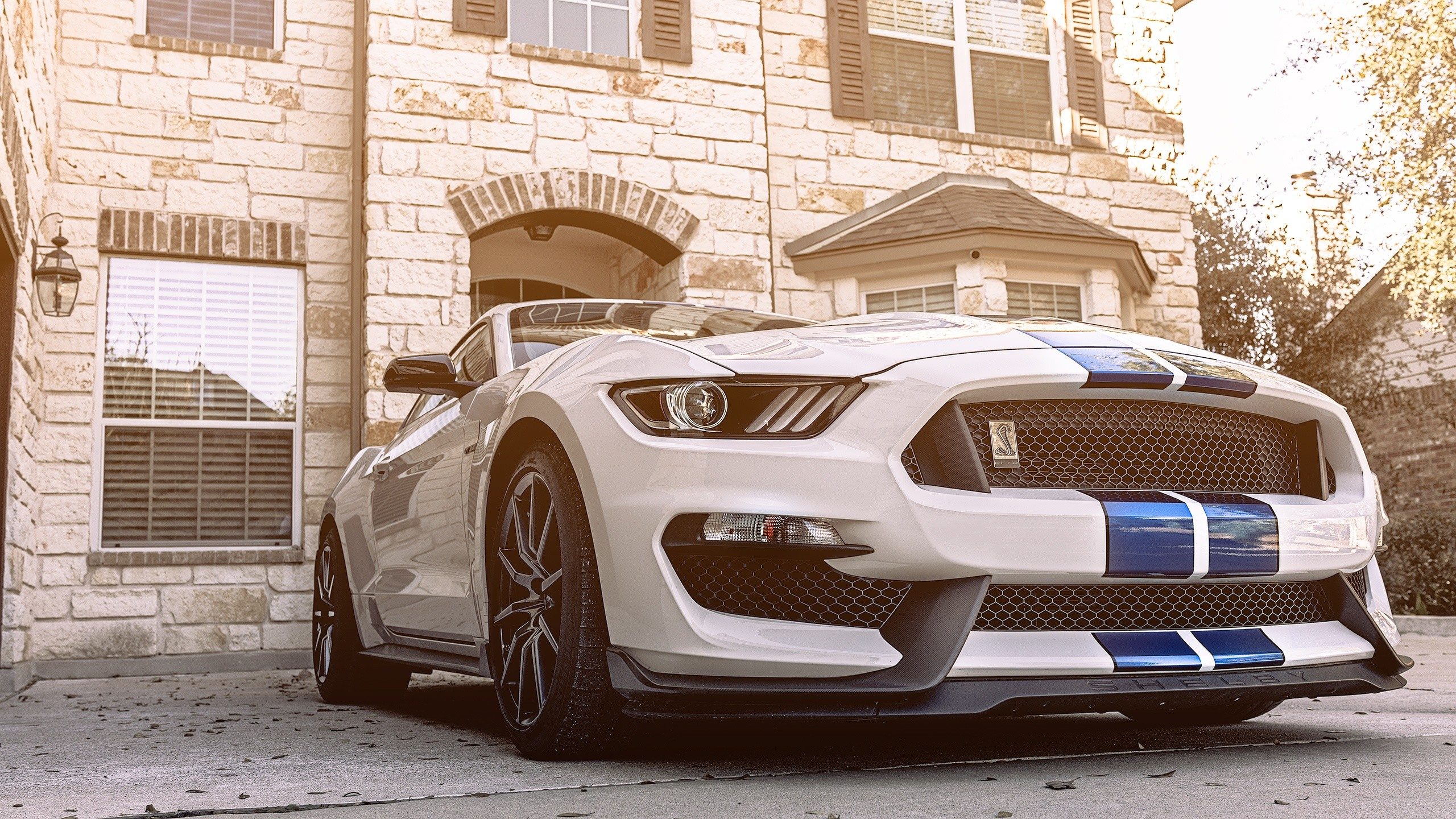 2018 Shelby Gt350 Wallpaper 74 Images