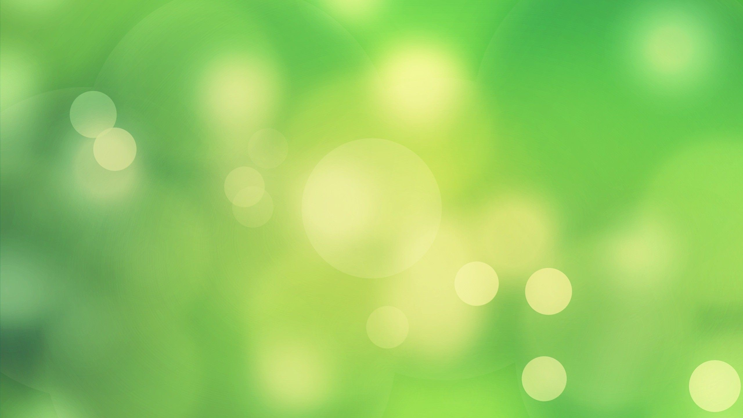 2560x1440 Download Free Light Green Wallpaper | saba wallpapers