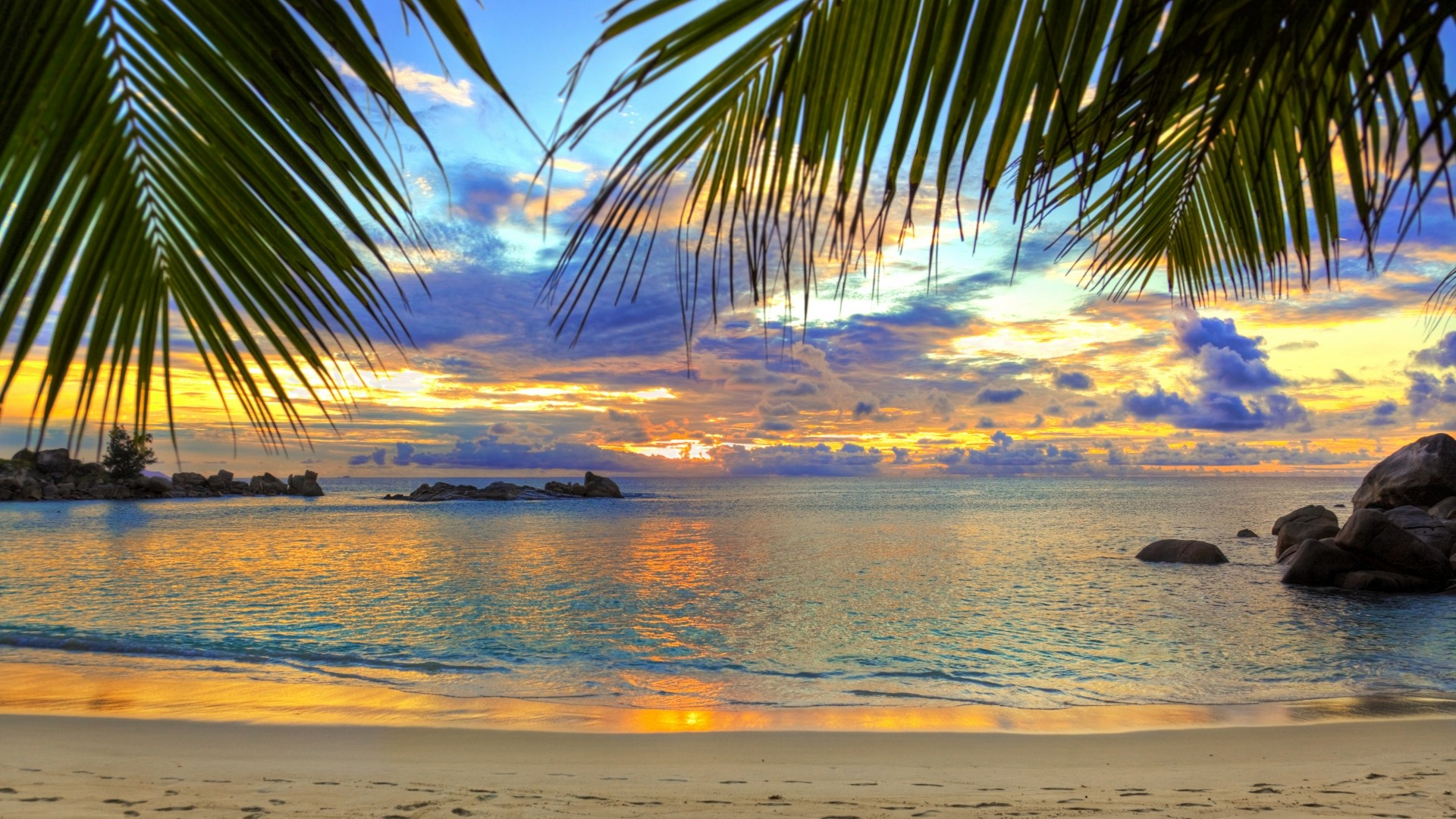 1920x1080 Preview wallpaper beach, tropics, sea, sand, palm trees