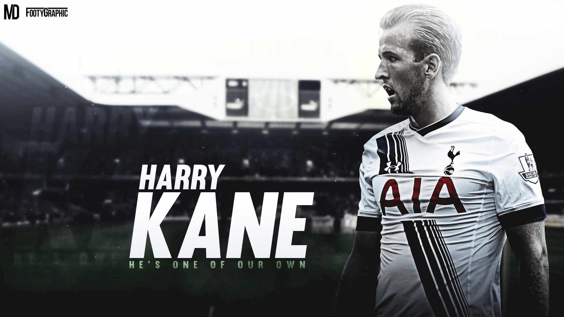 Tottenham Hotspur HD Wallpaper (74+ Images
