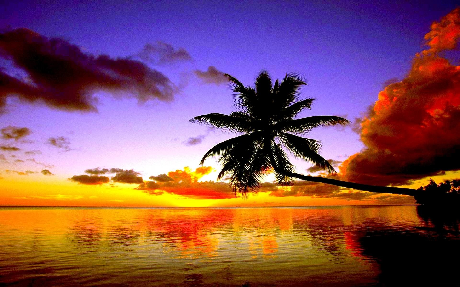Beach hd wallpapers 1080p 68 images 1920x1200 beach sunset wallpaper 1080p as wallpaper hd voltagebd Choice Image