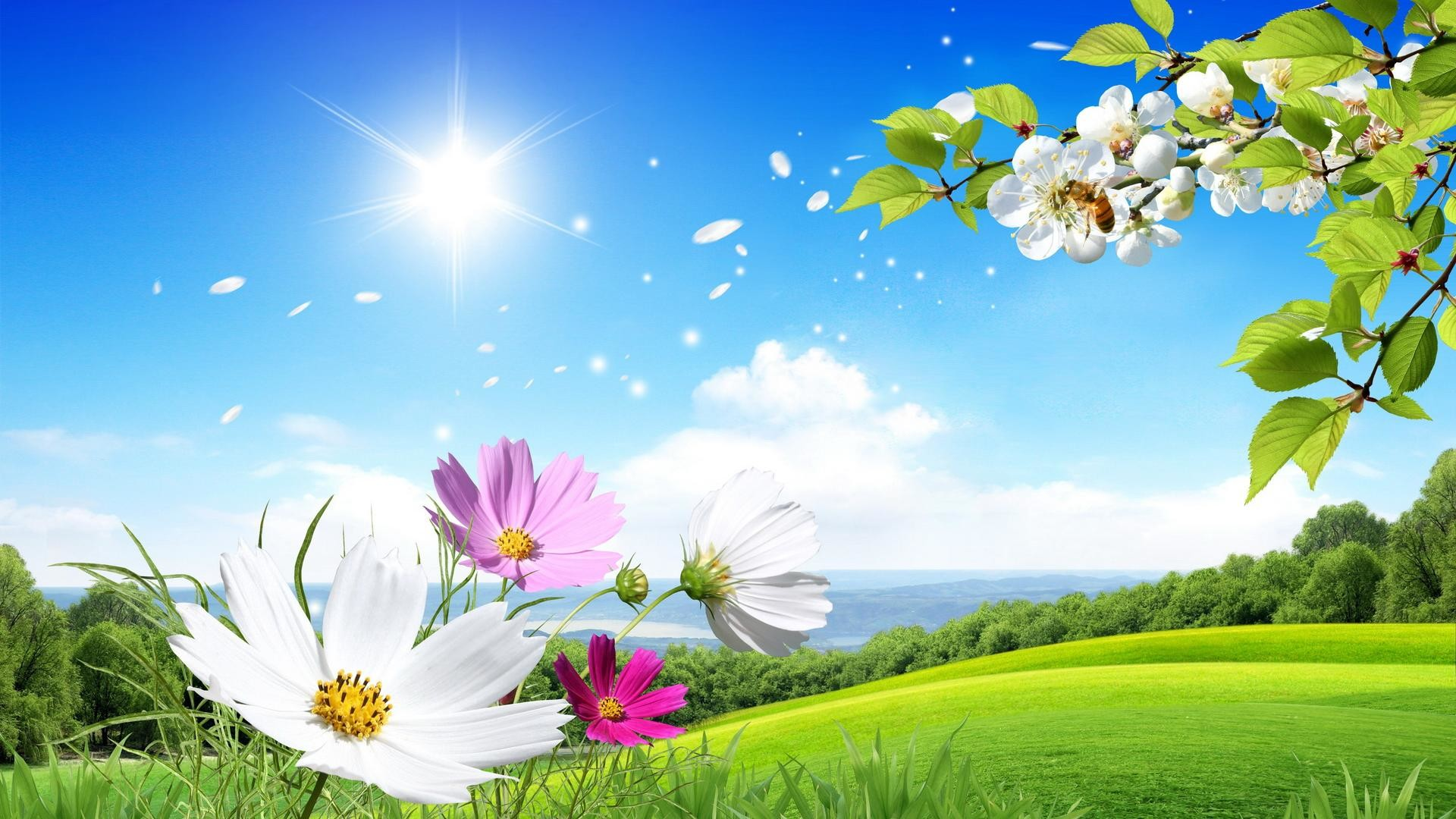 1920x1080 ... desktop beautiful summer images widescreen ...