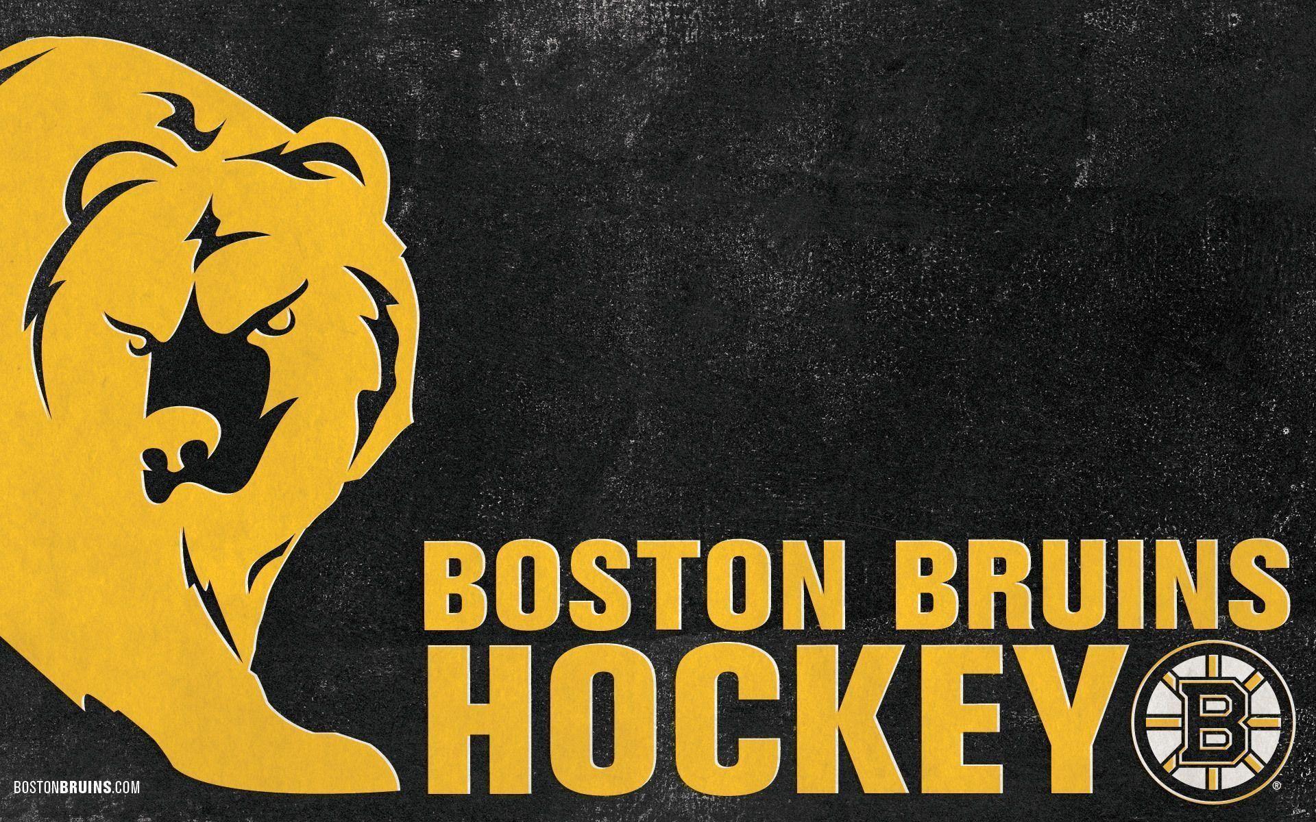 Boston Bruins iPhone Wallpaper 69 images