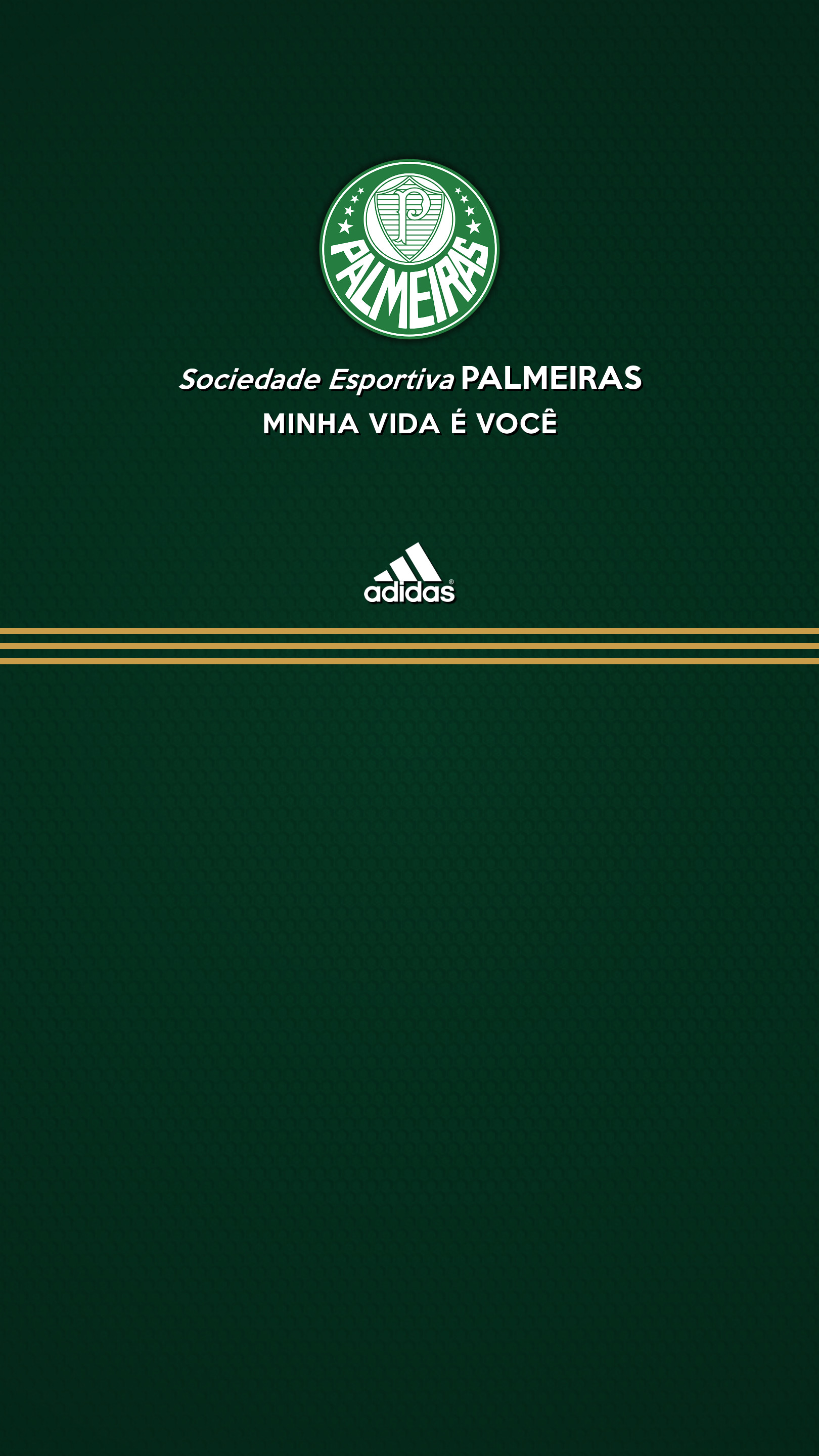 1620x2880 Iphone Palmeiras Wallpaper