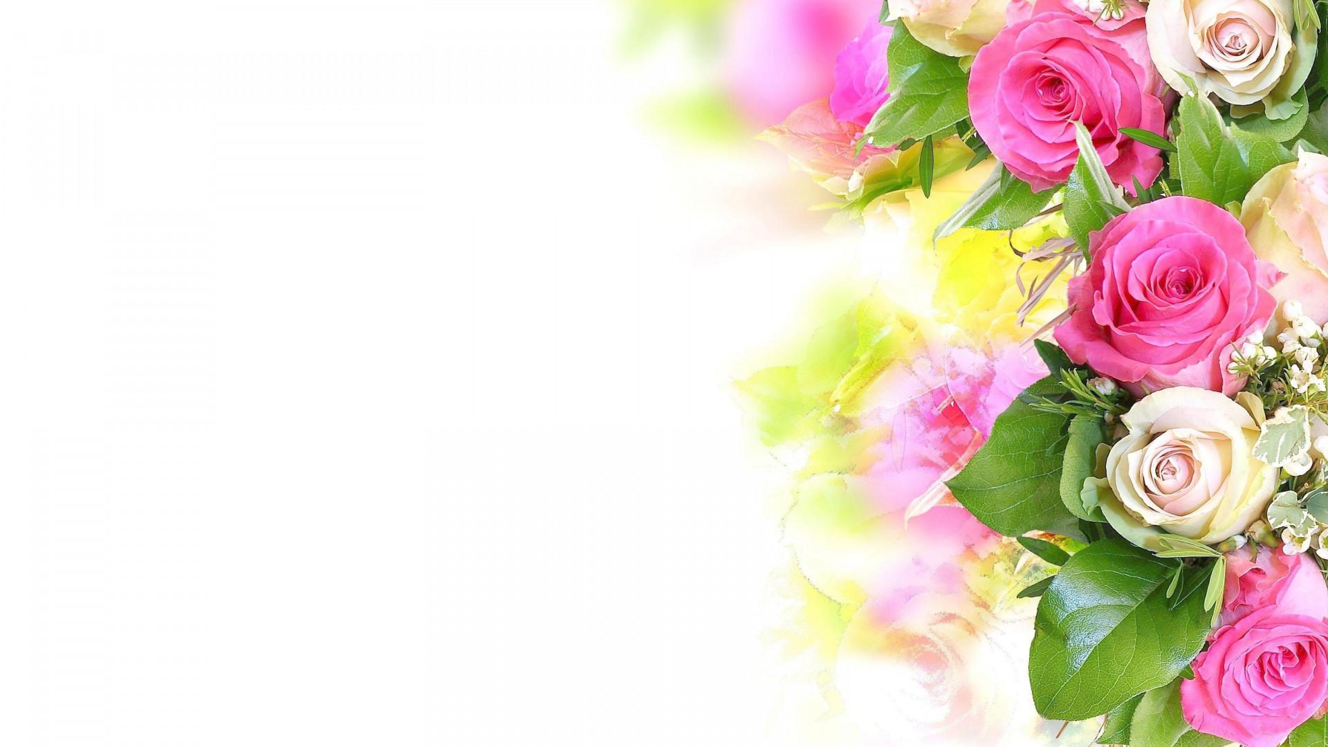 Flower Background Wallpaper 66 Images