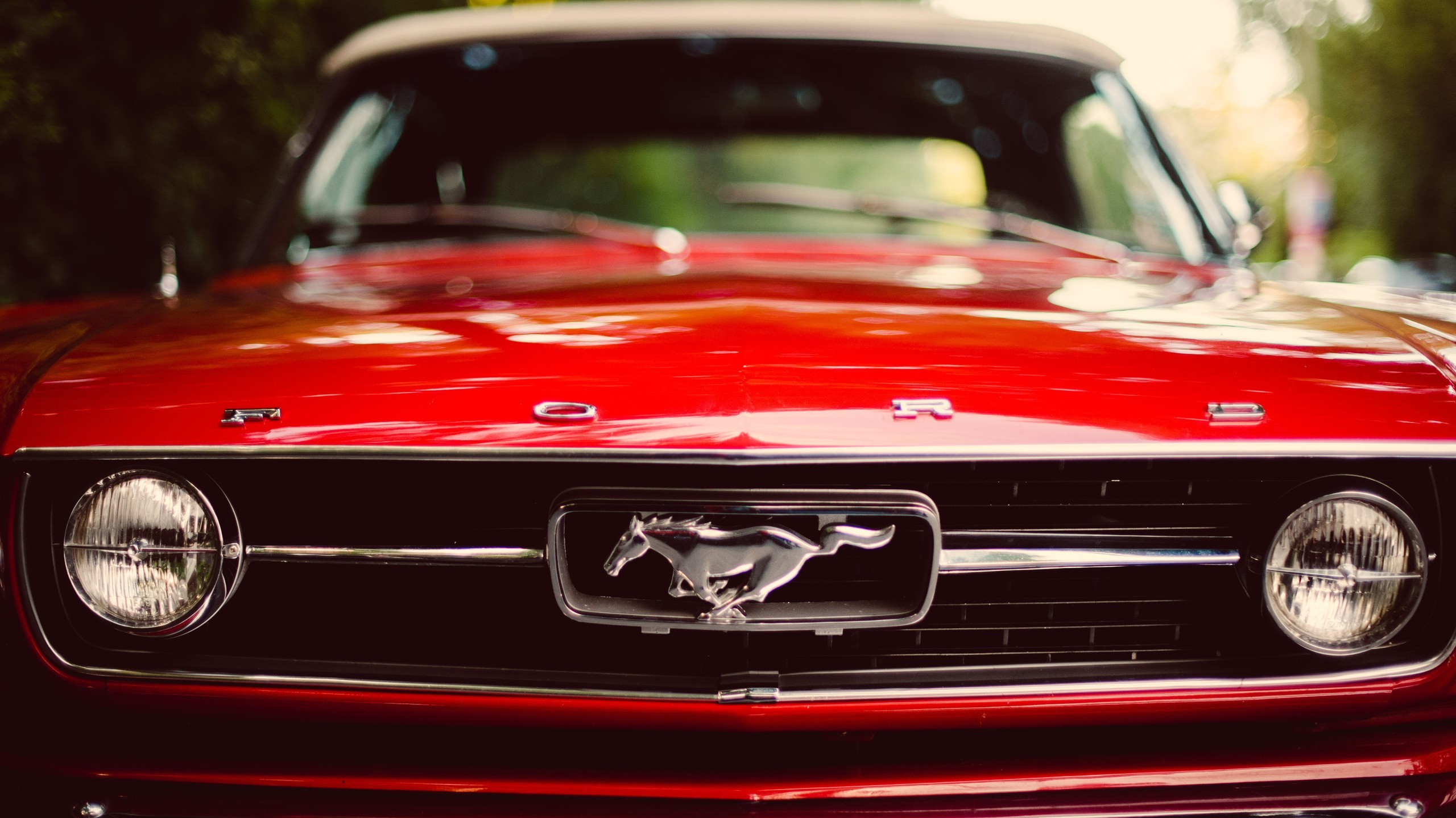 2560x1440 muscle Cars, Ford Mustang, Red, Car Wallpapers HD / Desktop and Mobile  Backgrounds