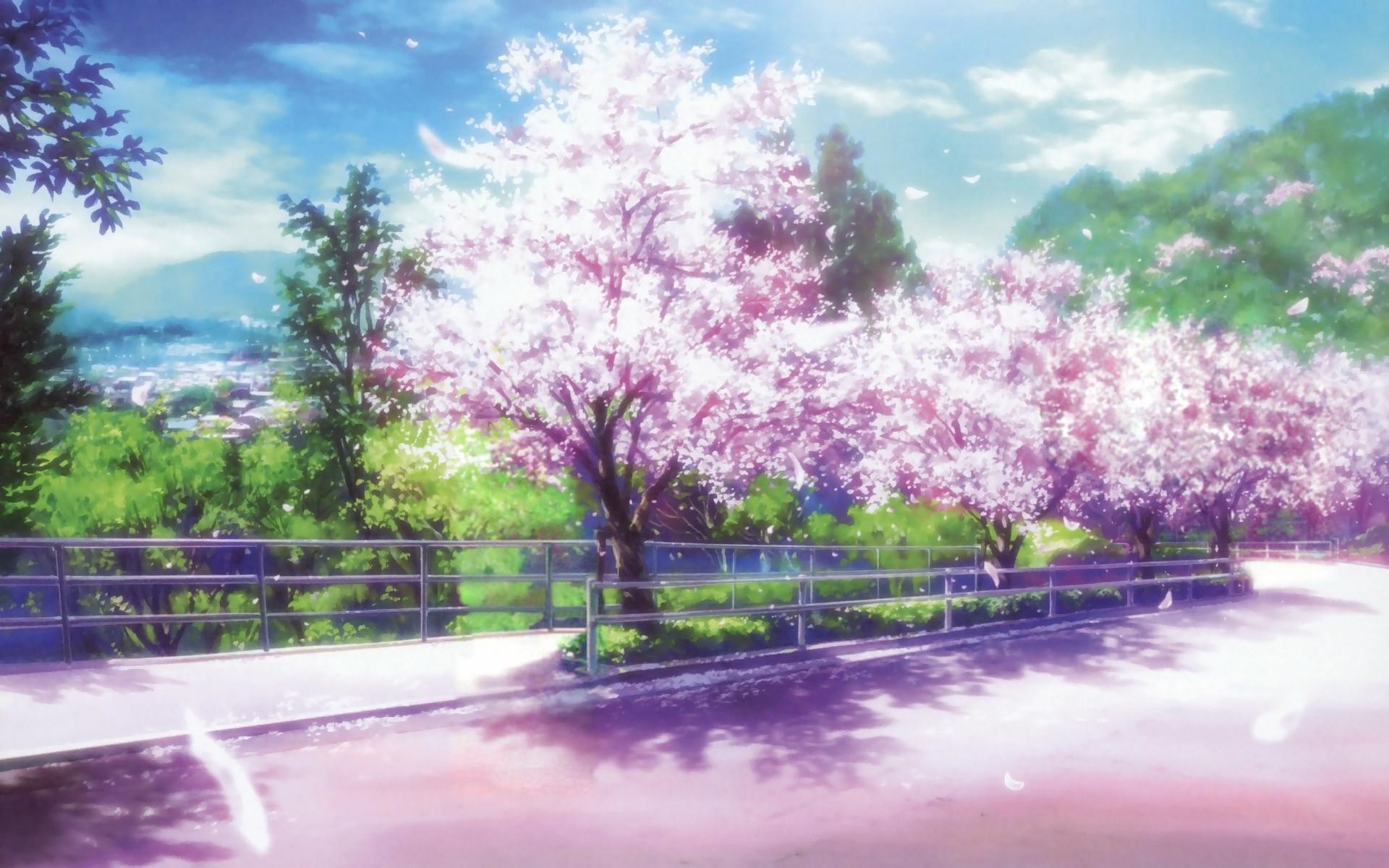 cherry blossom background 68 images. Black Bedroom Furniture Sets. Home Design Ideas