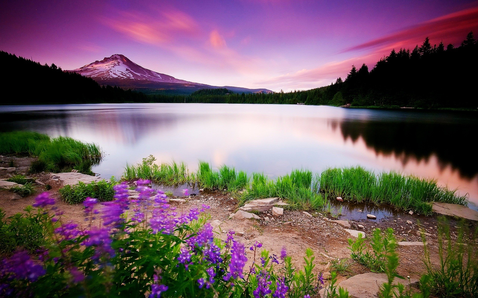 1920x1200 Page 3: Full HD 1080p <b>Spring Wallpapers</b> HD