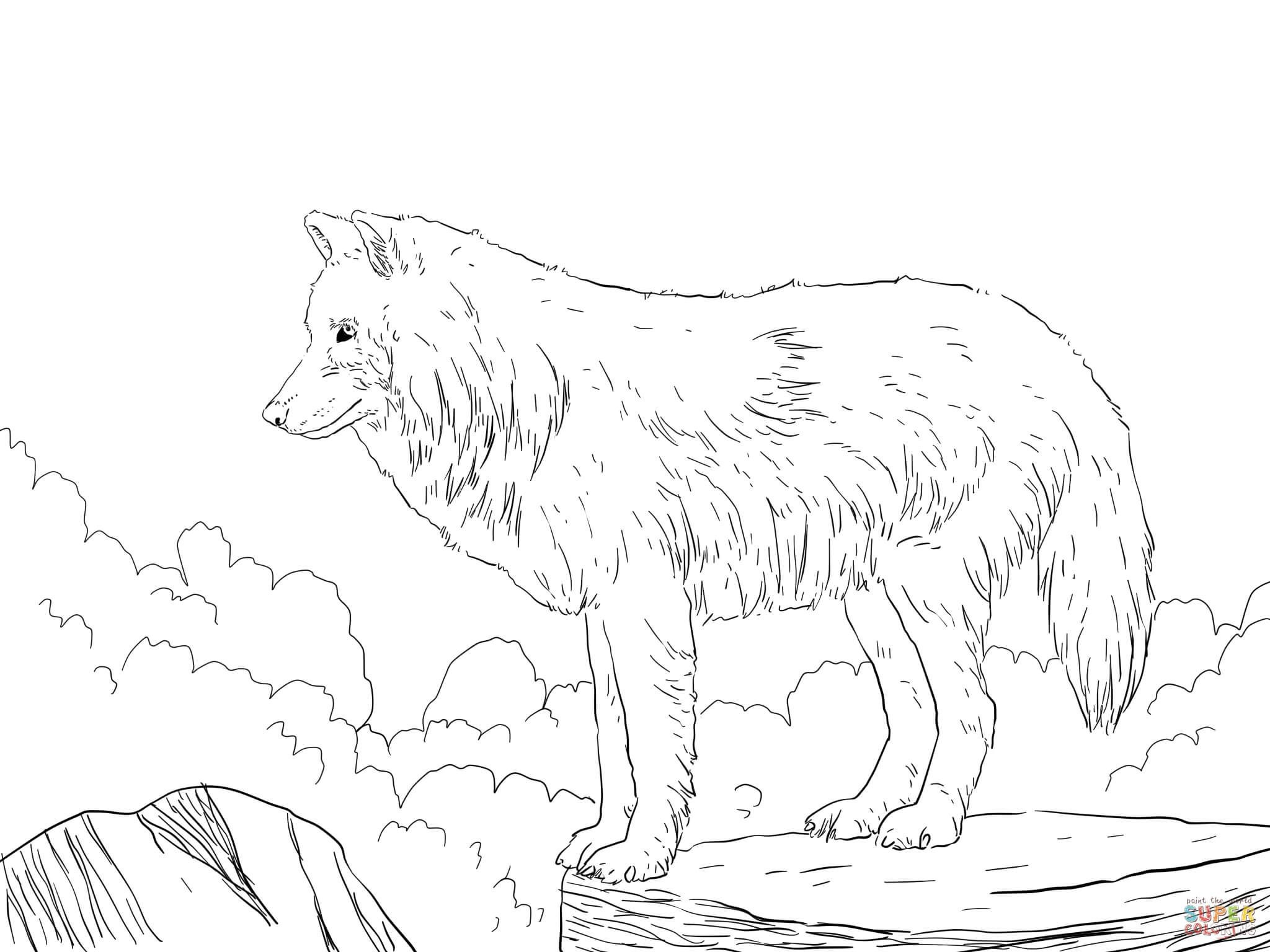 2048x1536 Animal Jam Arctic Wolf Coloring Pages