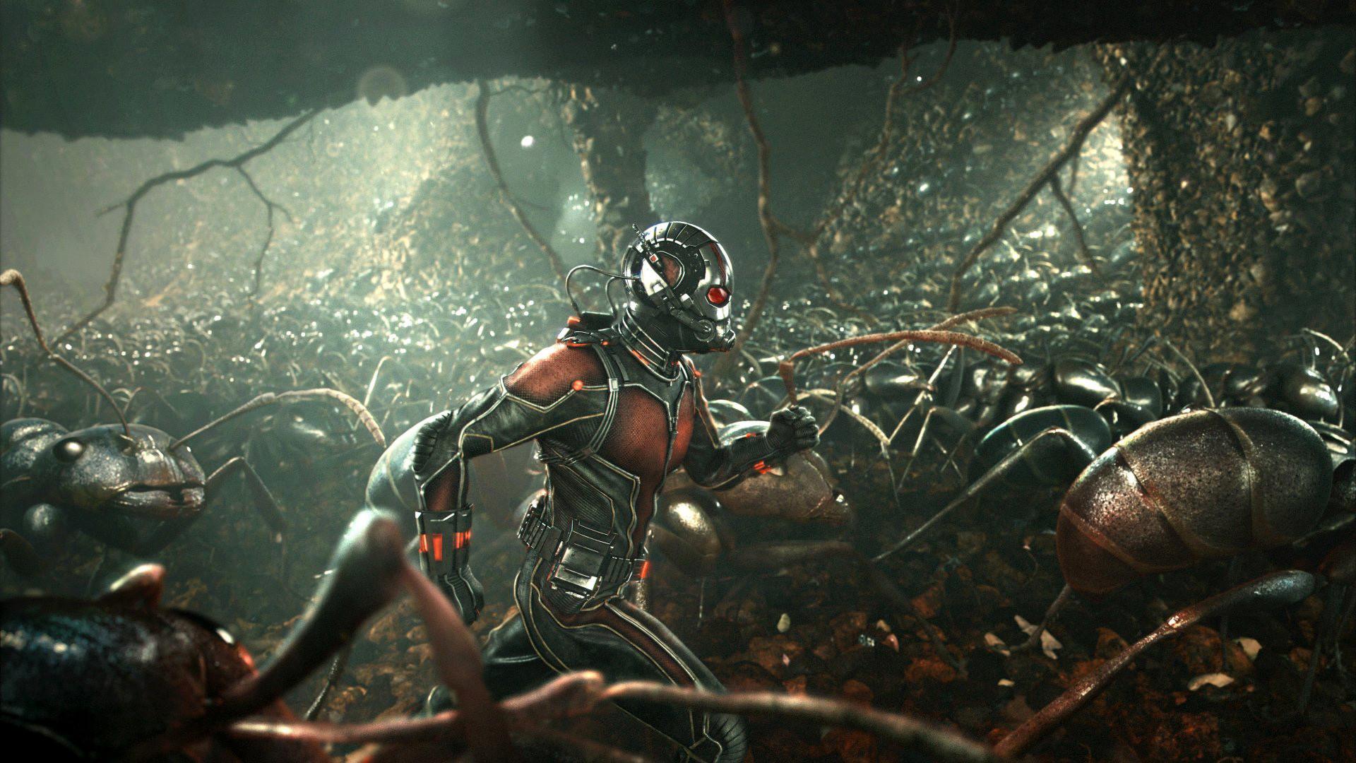 1920x1080 Ant Man Wallpaper 45