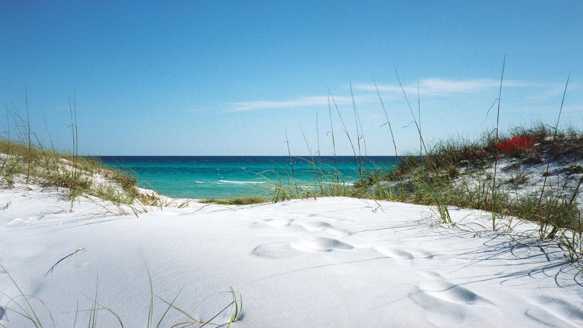 beach christmas wallpaper for desktop (50+ images)
