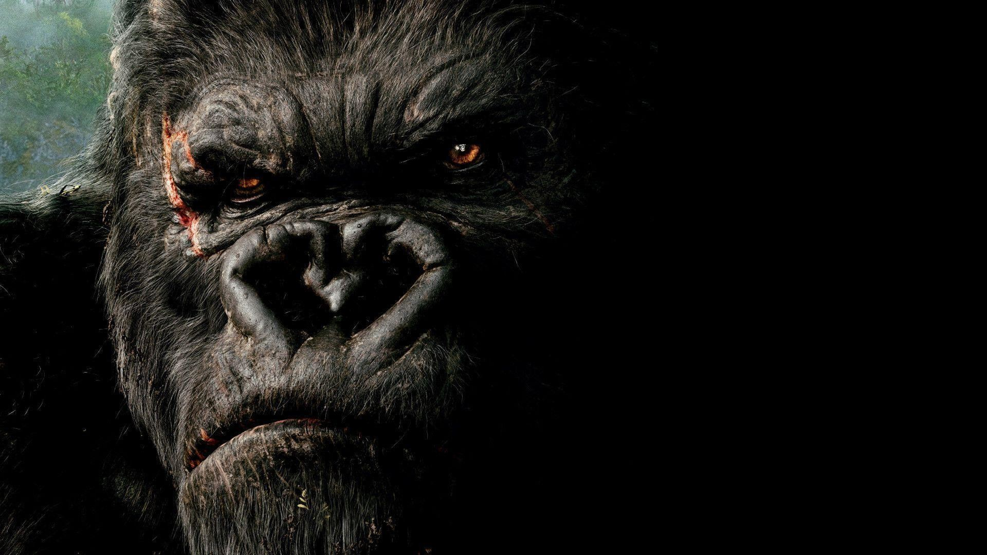 1920x1080 King Kong Wallpaper Hq Wallpaper 12560 Car Pictures