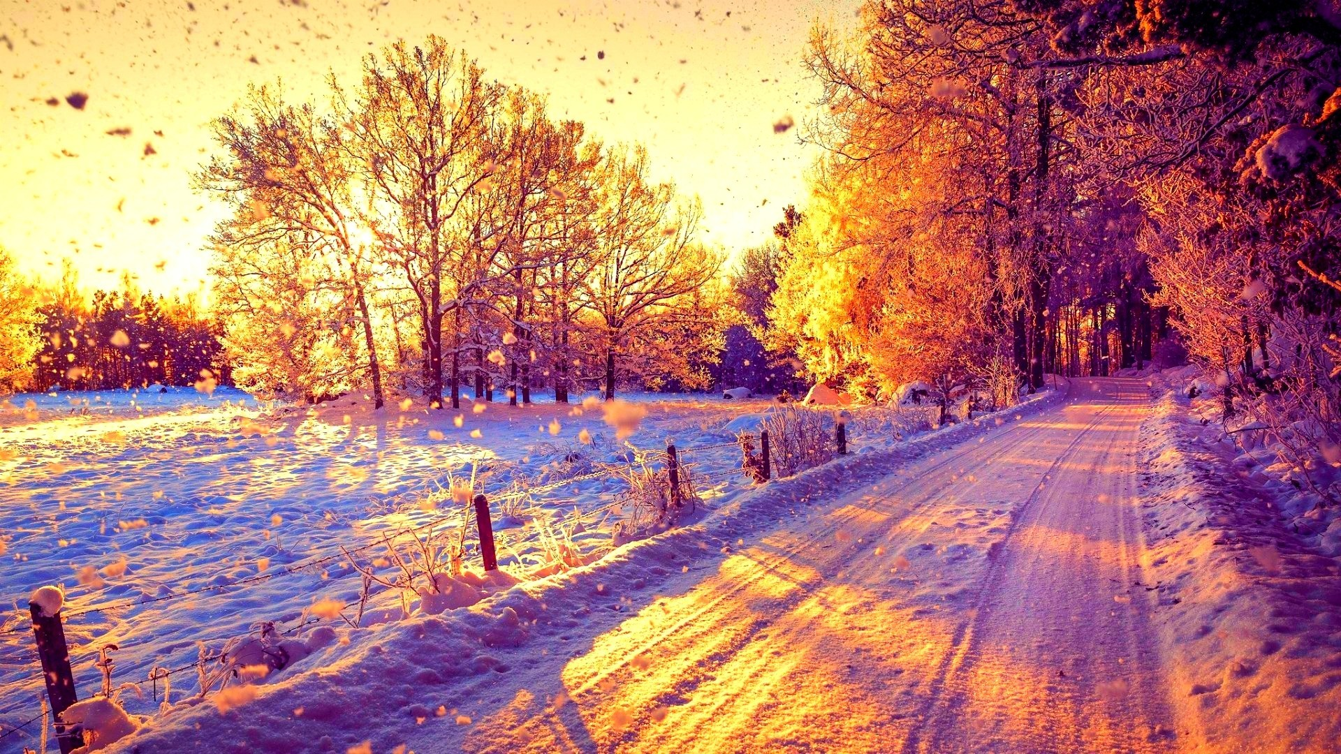 1920x1080 Beautiful Snow Forest Winter Sun Trees Nature Sunny Road Sunset Sunshine  Amazing Wallpaper Iphone 6 Plus