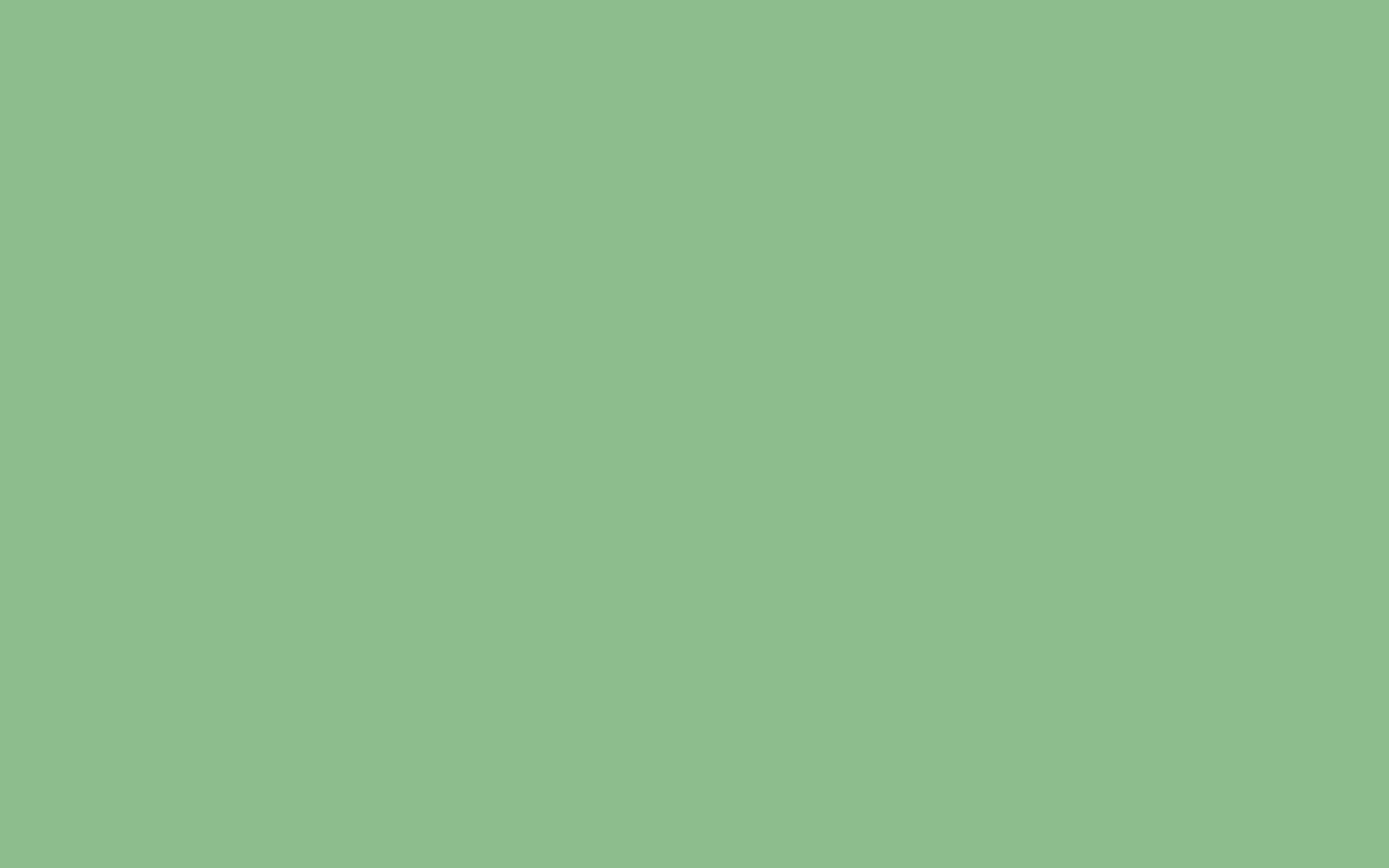 2560x1600  Dark Sea Green Solid Color Background