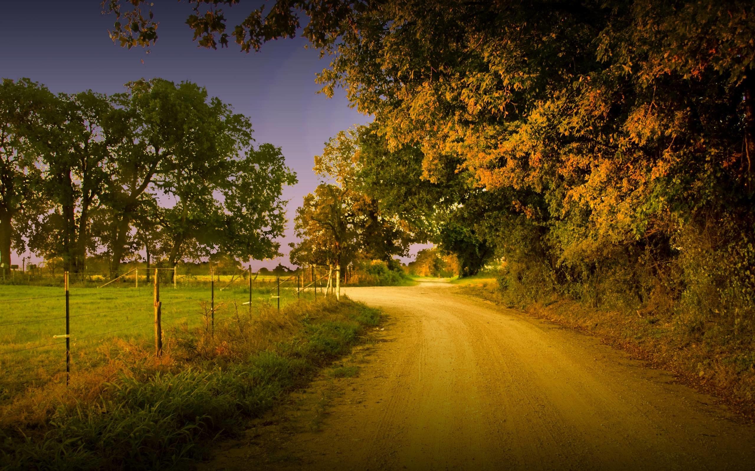 Country Tree Hill Windows Scenery Desktop Wallpapers Scenery