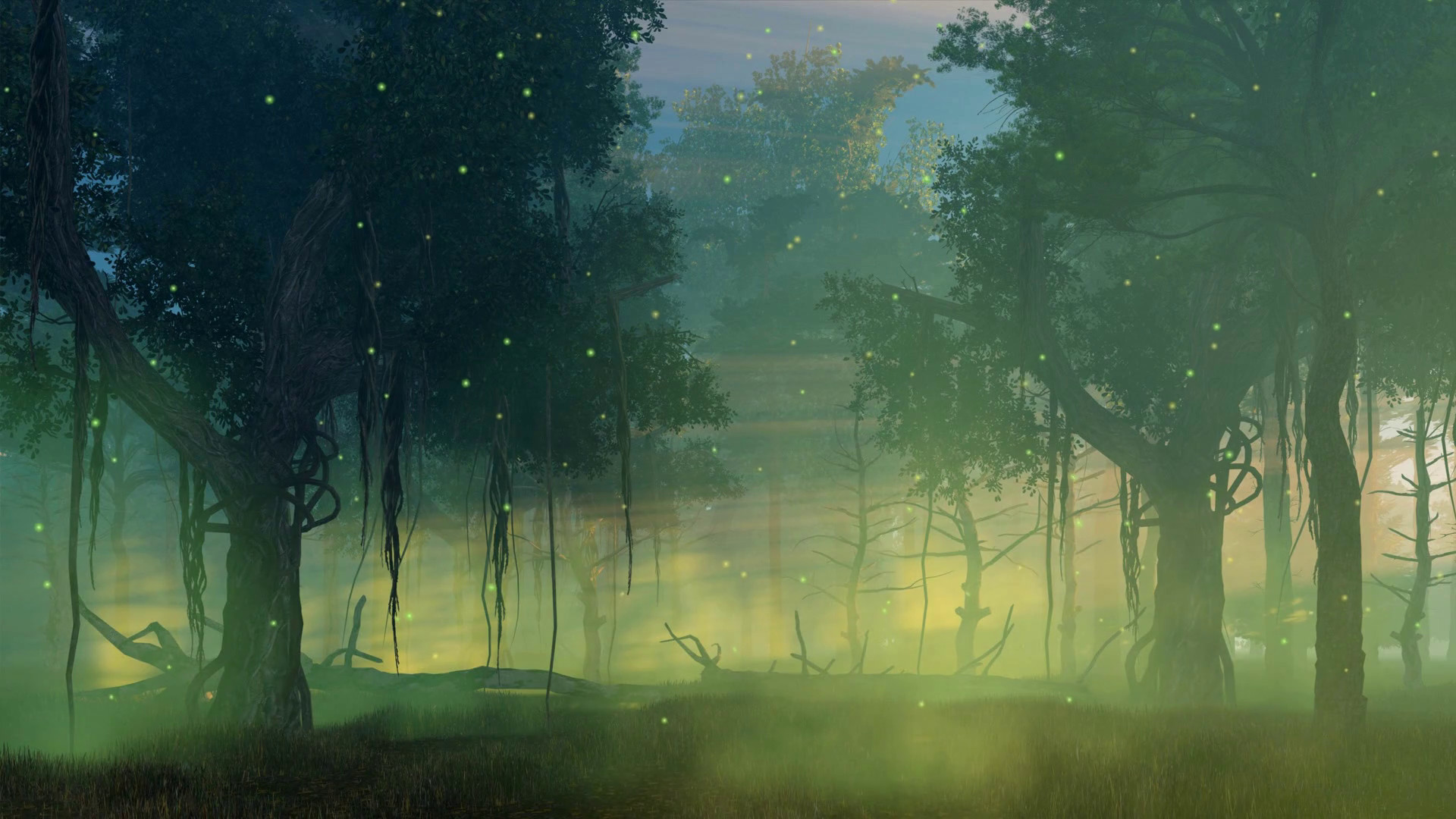 1920x1080 Fairytale woodland scenery with magic firefly lights flying in the air in a  scary misty night forest. Cinemagraph style fantasy animation rendered in  4K ...