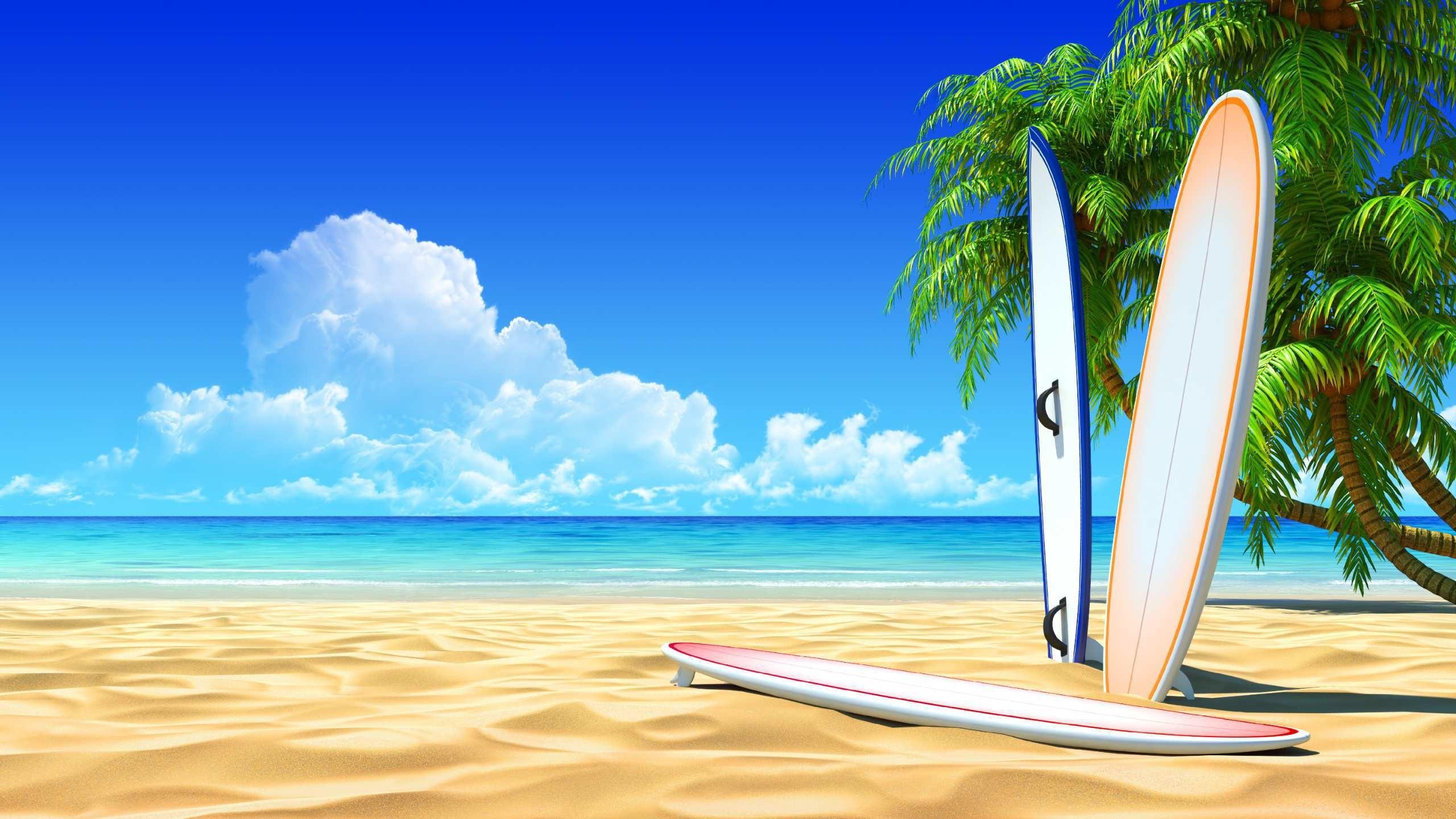 Surfboard Wallpaper 67 Images