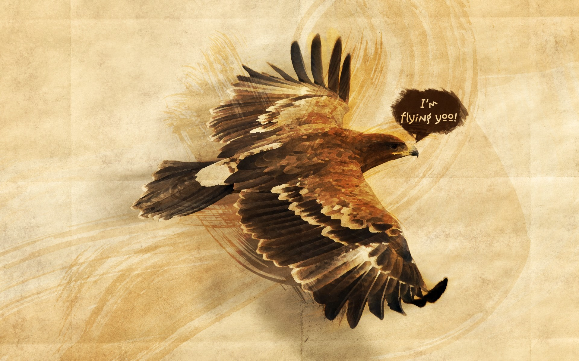 1920x1200 Bald Eagle Wallpaper 234263