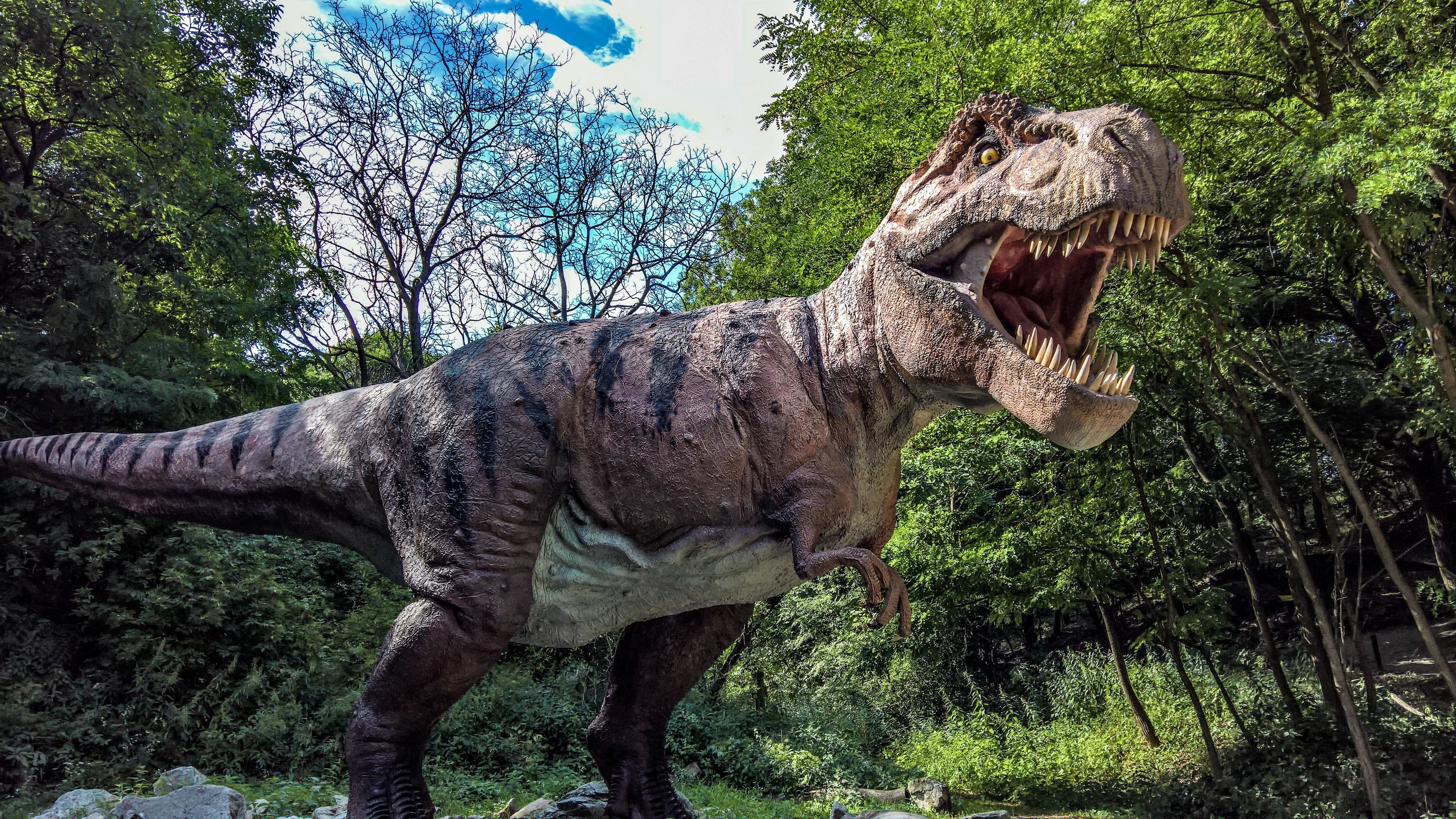 tyrannosaurus rex wallpaper 71 images