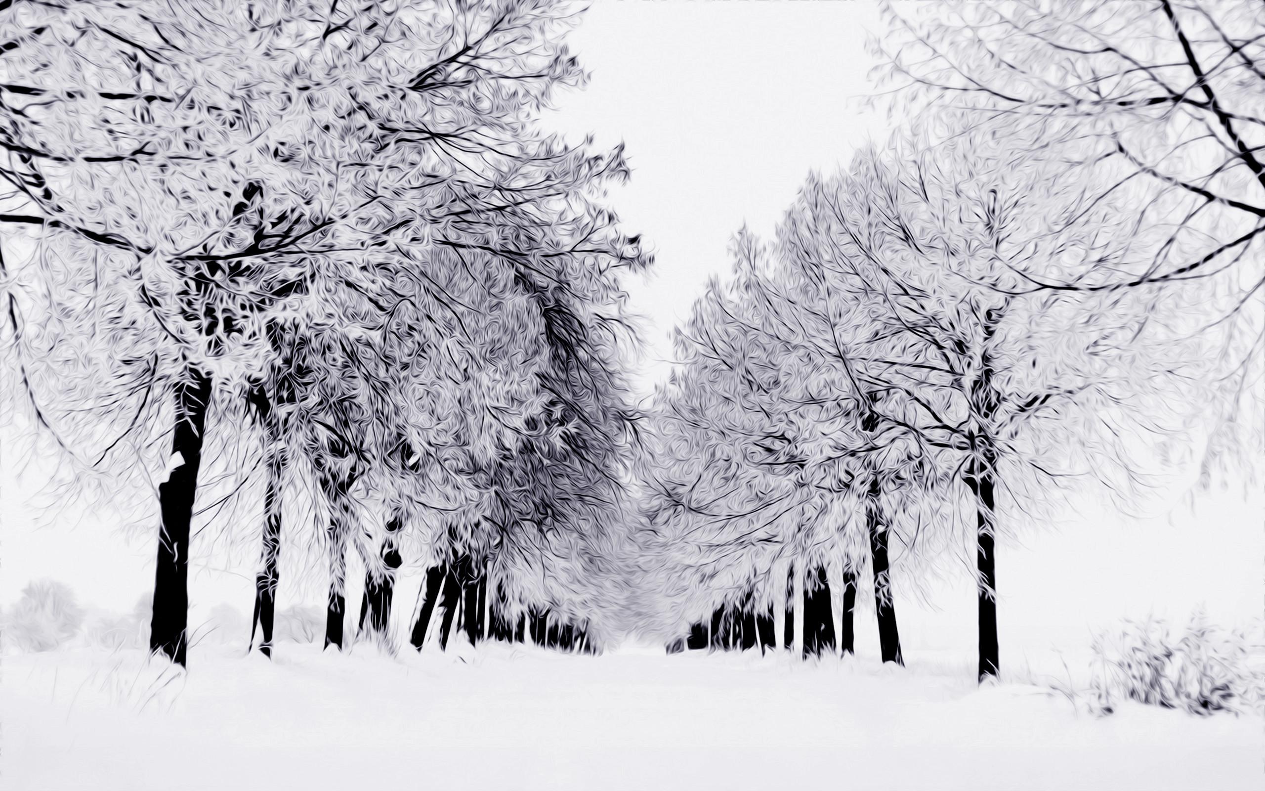 tree scene wallpaper 41 images