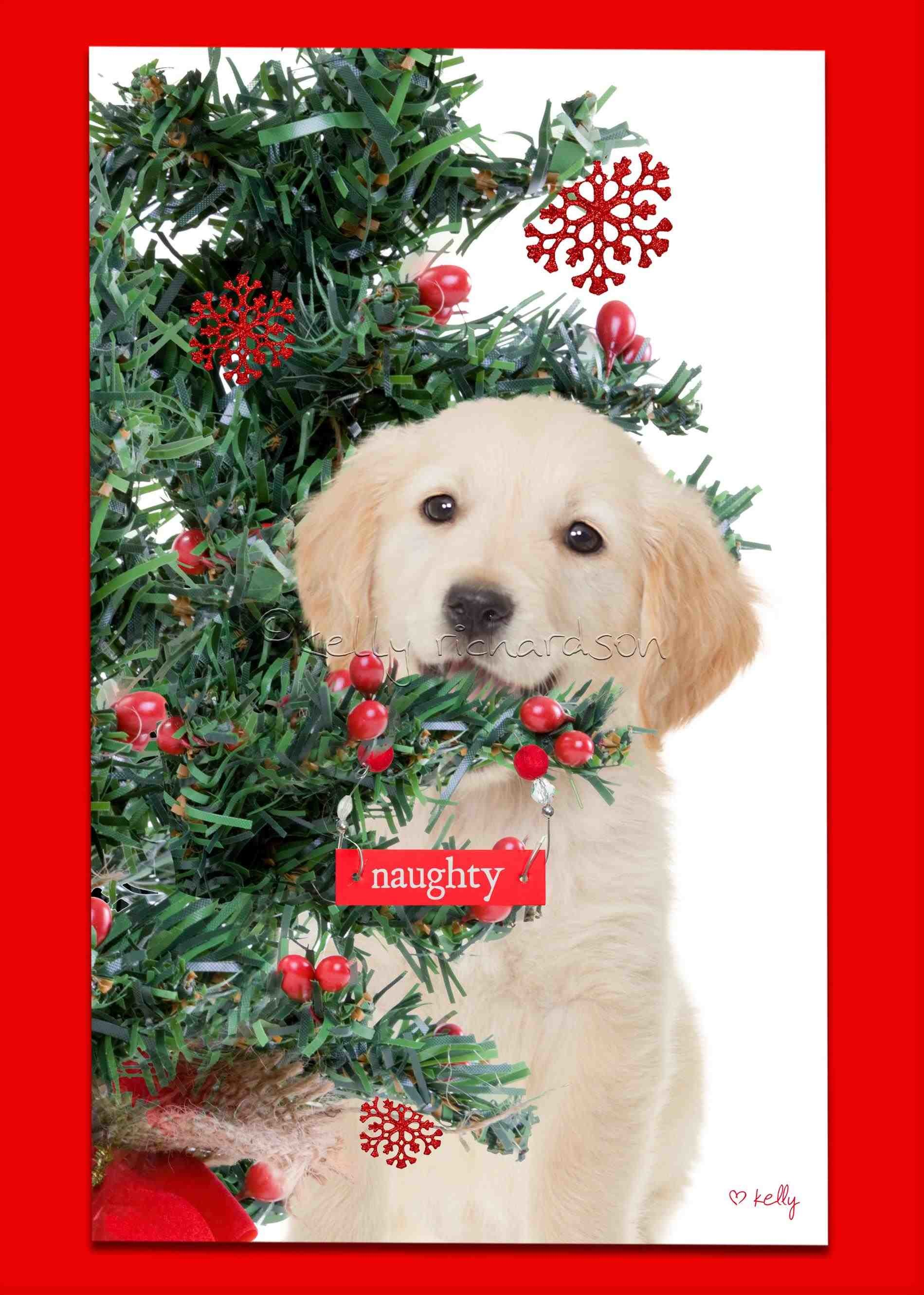 1899x2658 ... Wallpaper; Christmas Golden Retriever Puppies chemineewebsite ...