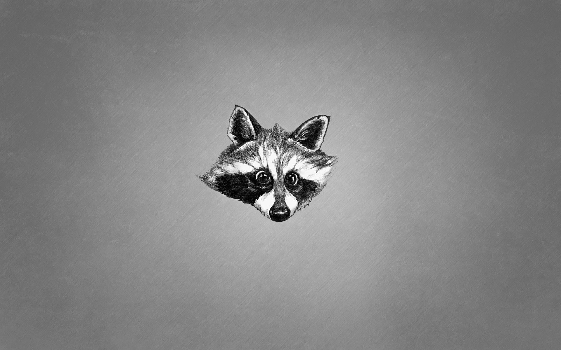 1920x1200 animals face raccoon black and white minimalism raccoon