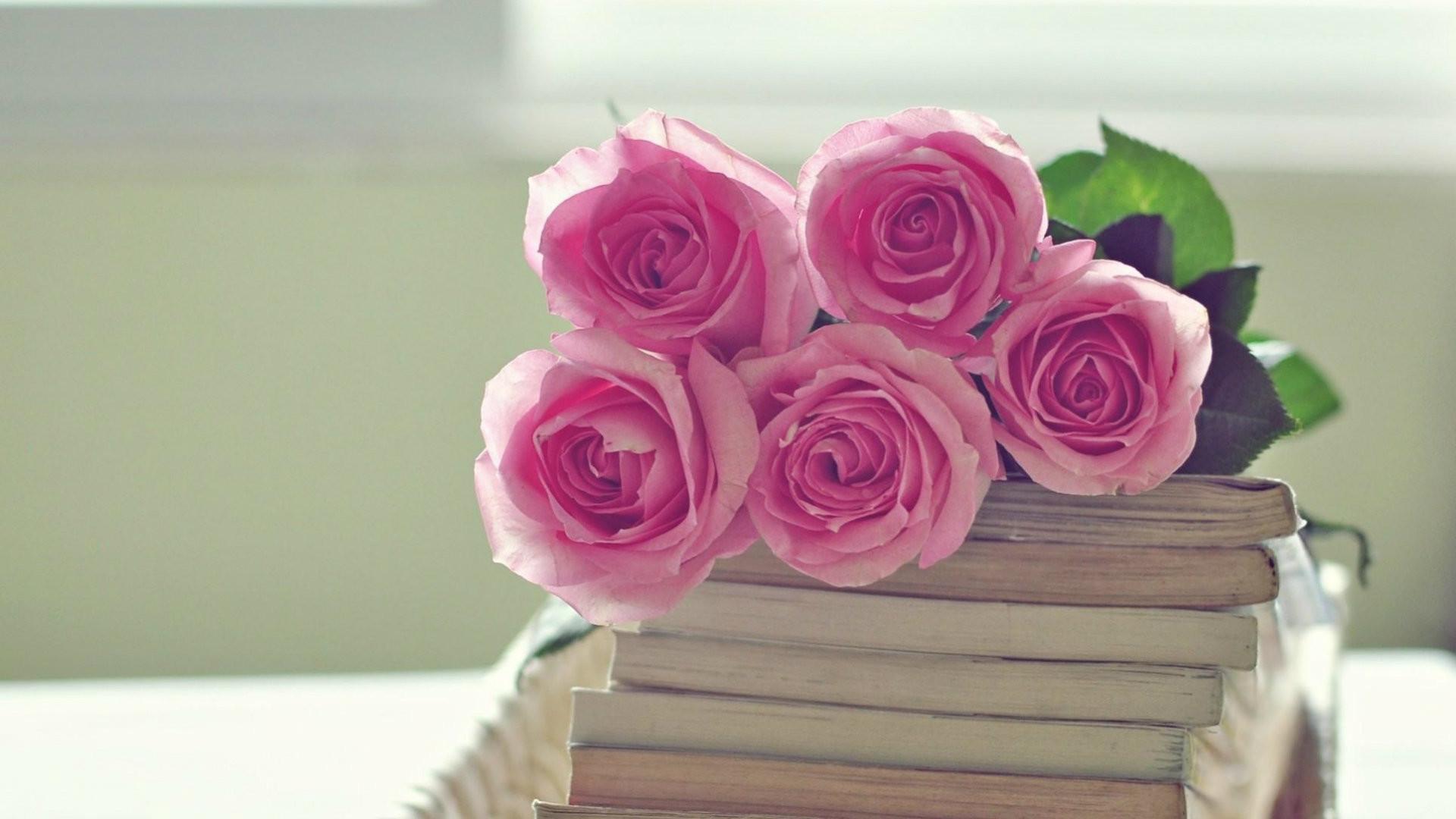 Pink roses wallpaper 64 images - Rose desktop wallpaper hd ...