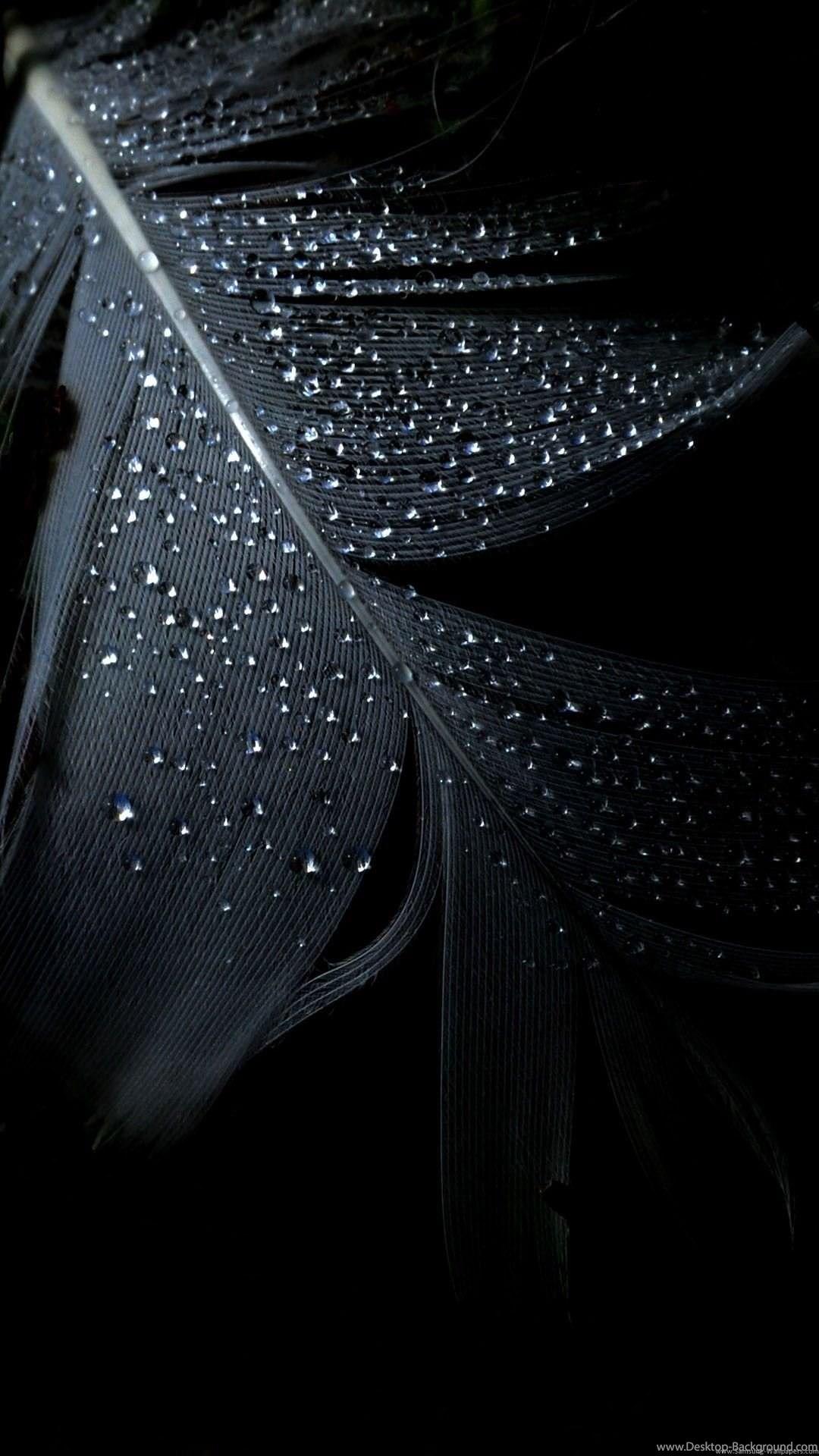 Black Wallpaper Hd Mobile 81 Images