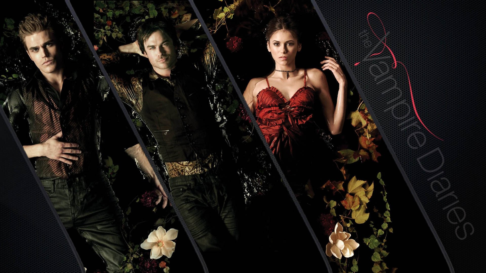 Vampire Diaries Wallpapers (77+ images)