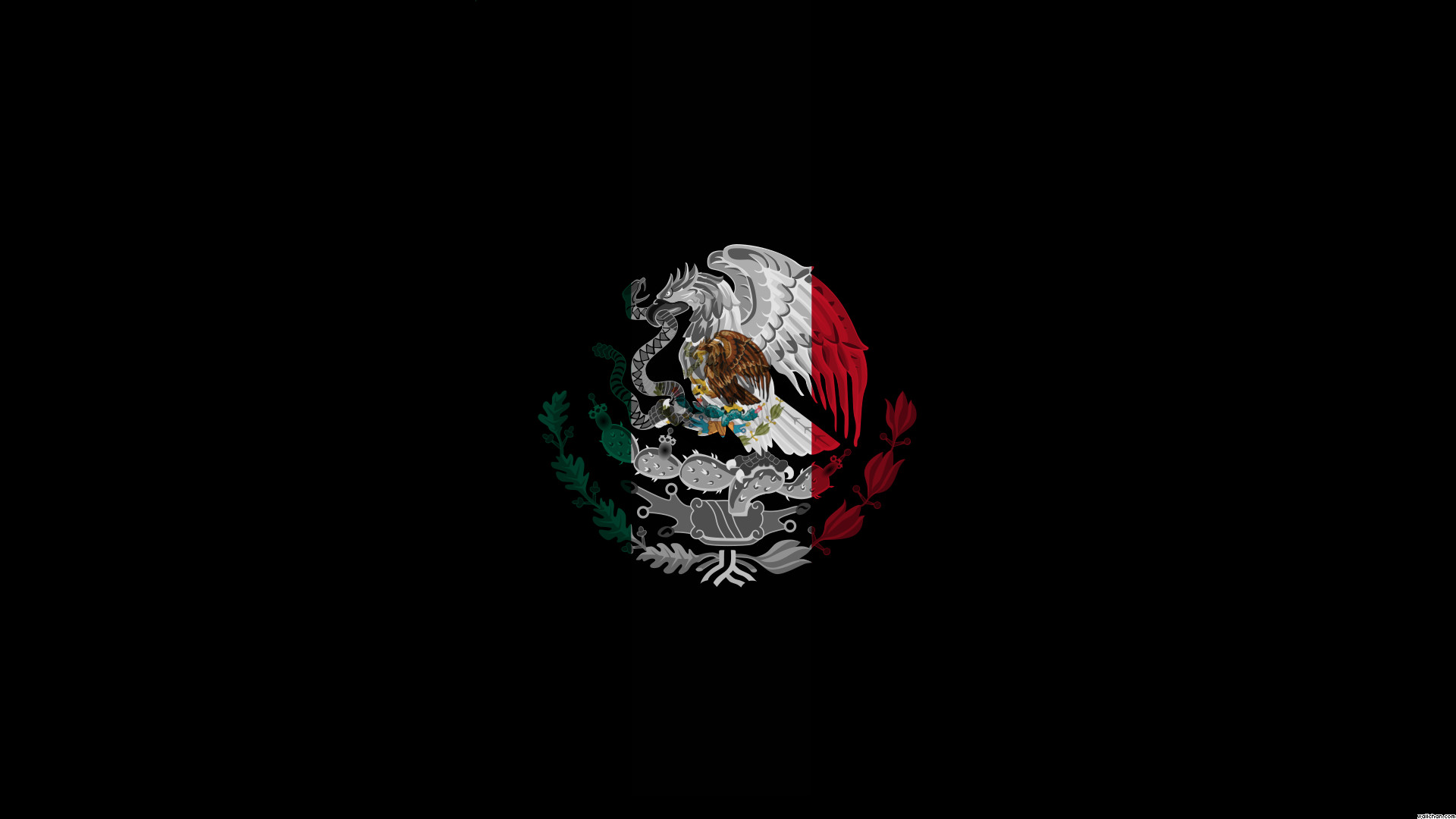 1920x1080 Cool Mexico Flag Wallpaper