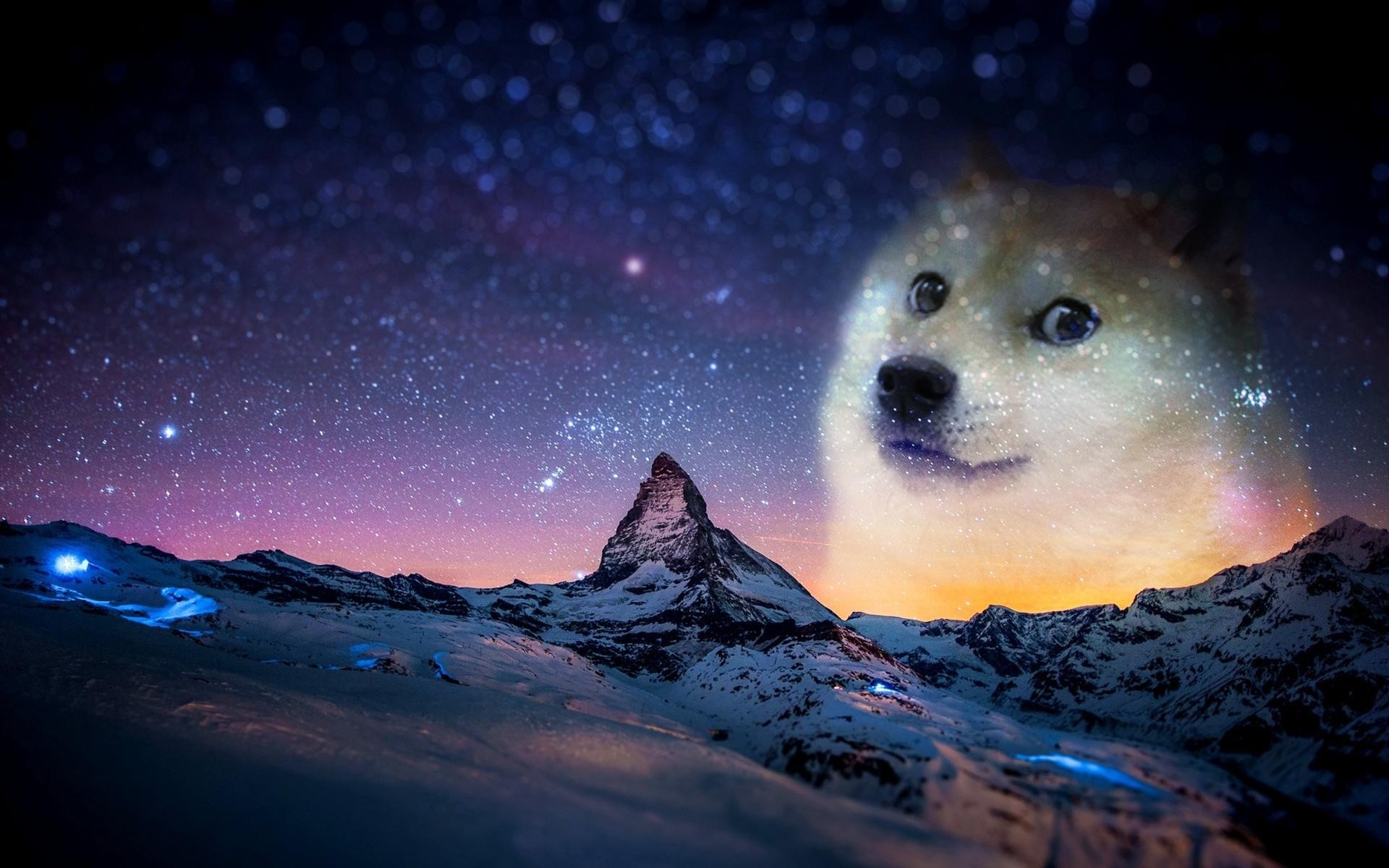 1920x1200 Doge Space Wallpaper