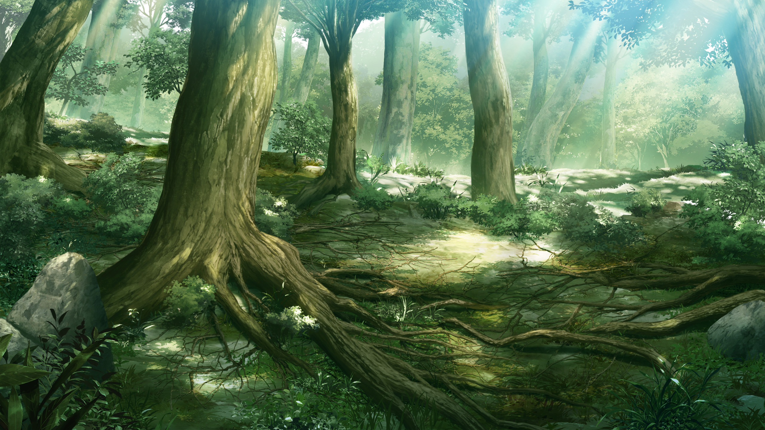 2560x1440 Anime Forest Scenery Wallpaper 7990