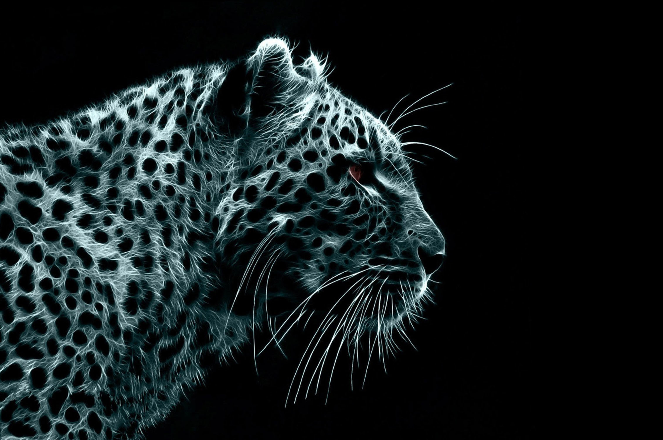 neon animal wallpapers 58 images
