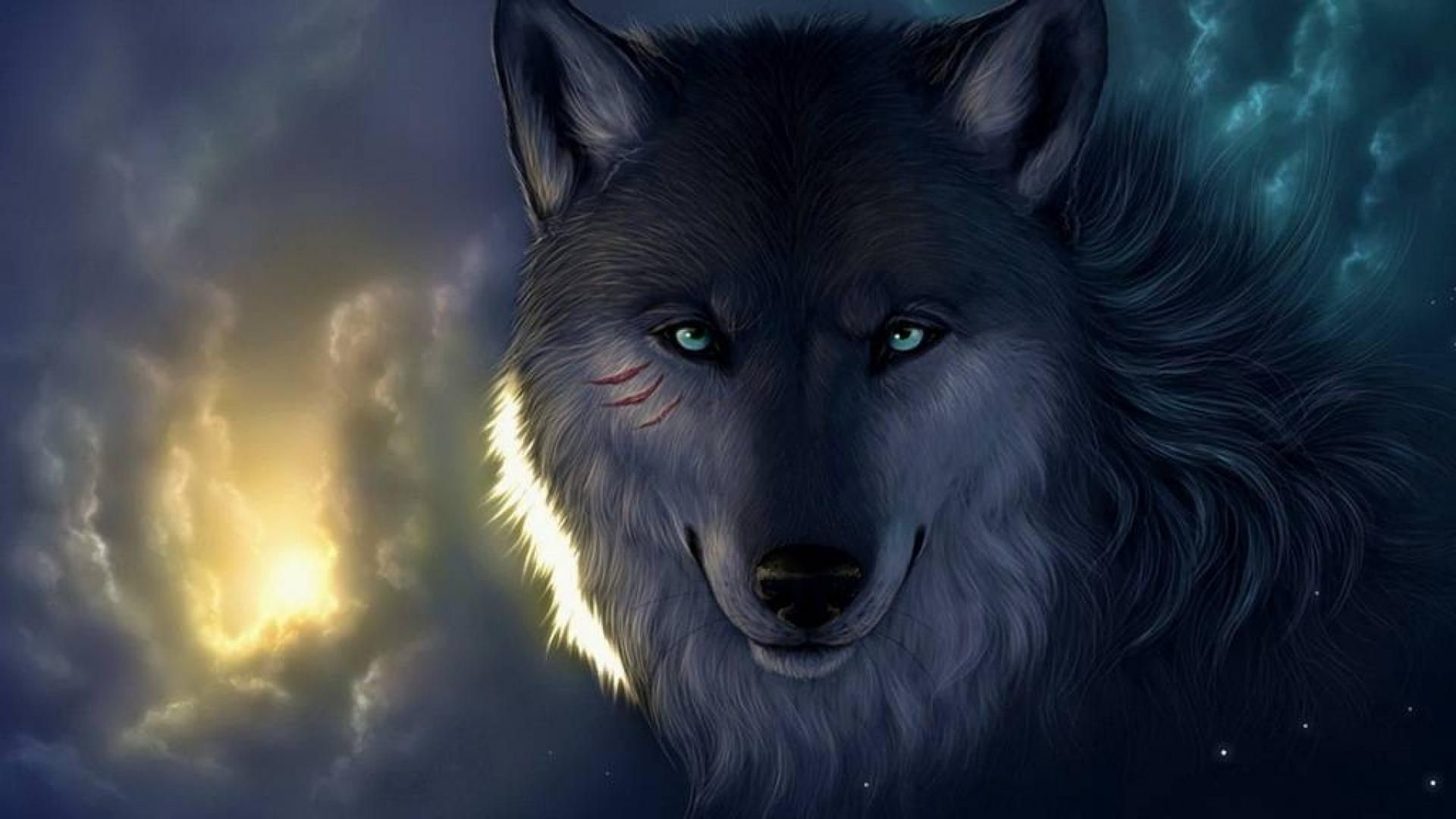 Twilight Wolf Wallpaper 70 Images